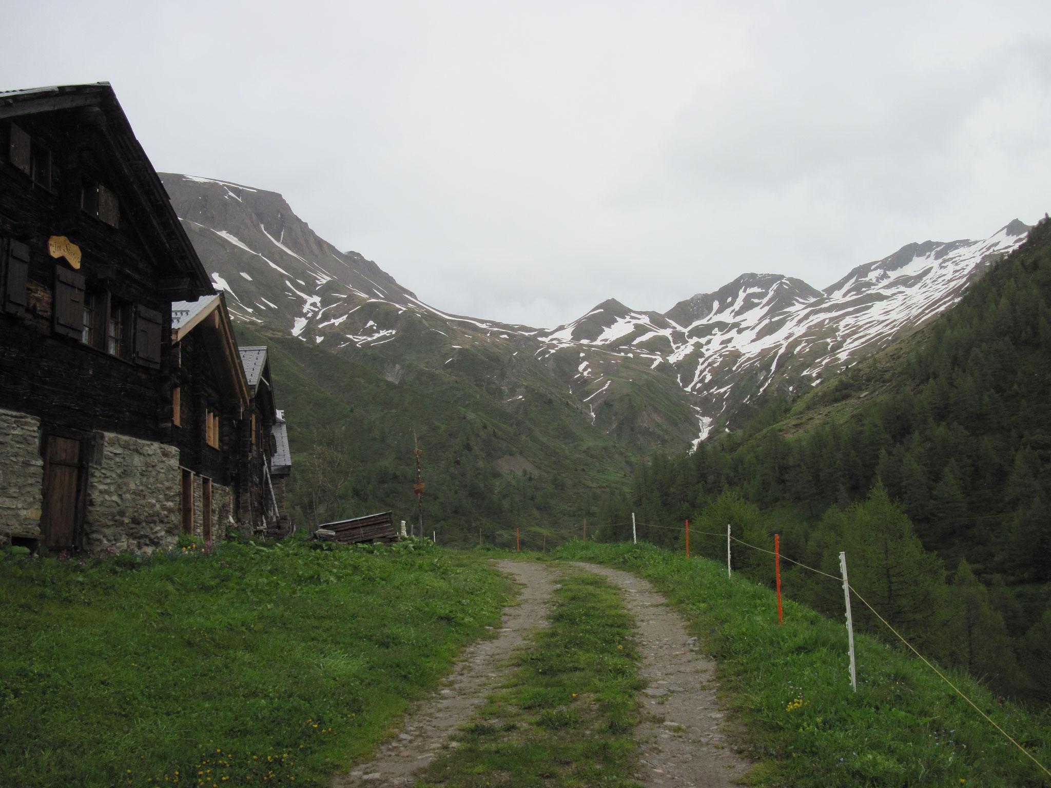 Ausblick von der Stafelalp zum Saflischpass