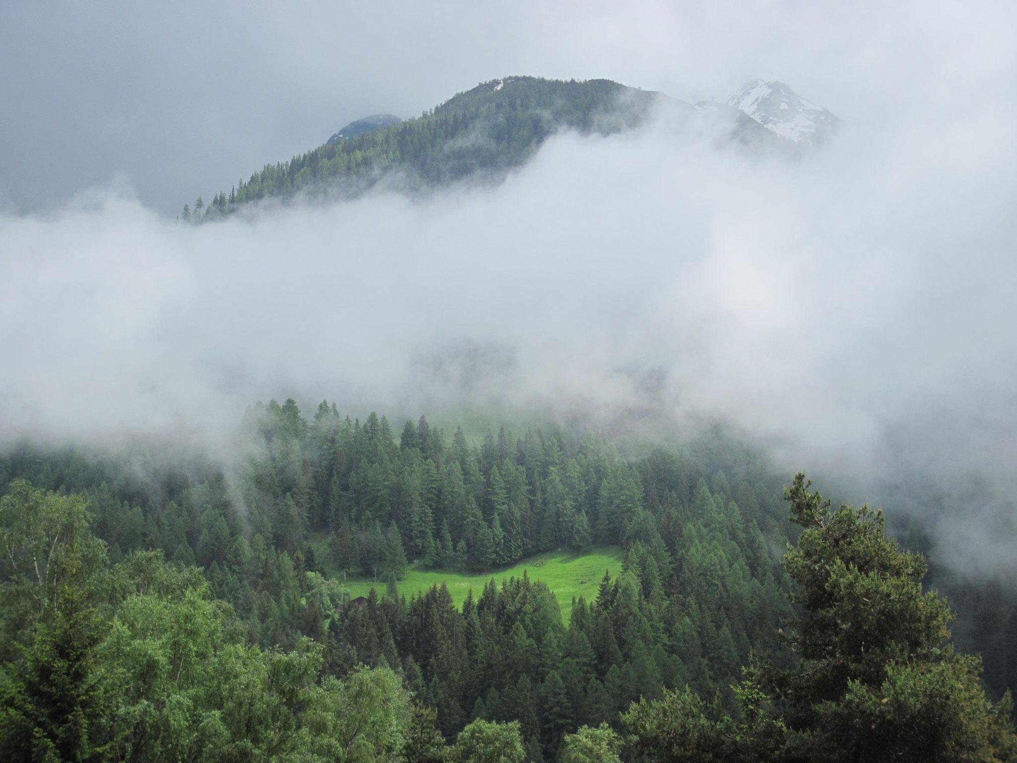Die Region Ganter im Nebel und Regen...doch auch da gibt es viel Schönes zu bestaunen...