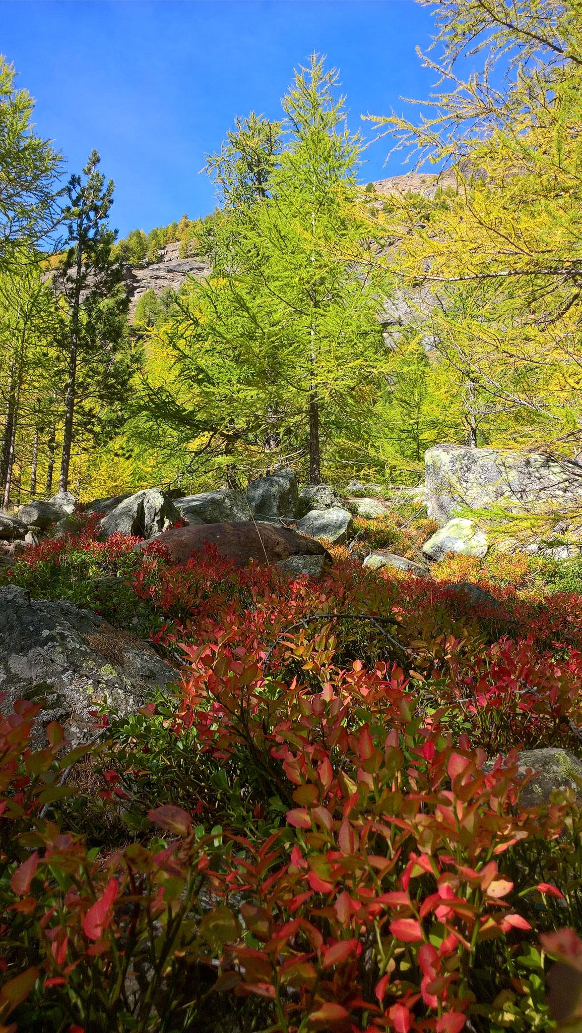 Herbststimmung im Almagellertal