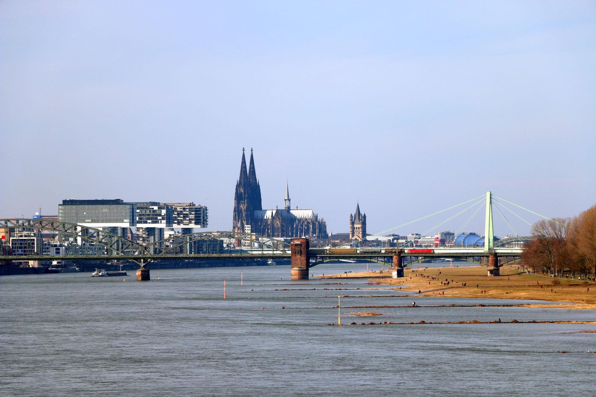 Geführte Fahrradtour - Blick aus der Ferne (Rodenkirchner Brücke) auf Südbrücke, Rheinauhafen und den Kölner Dom