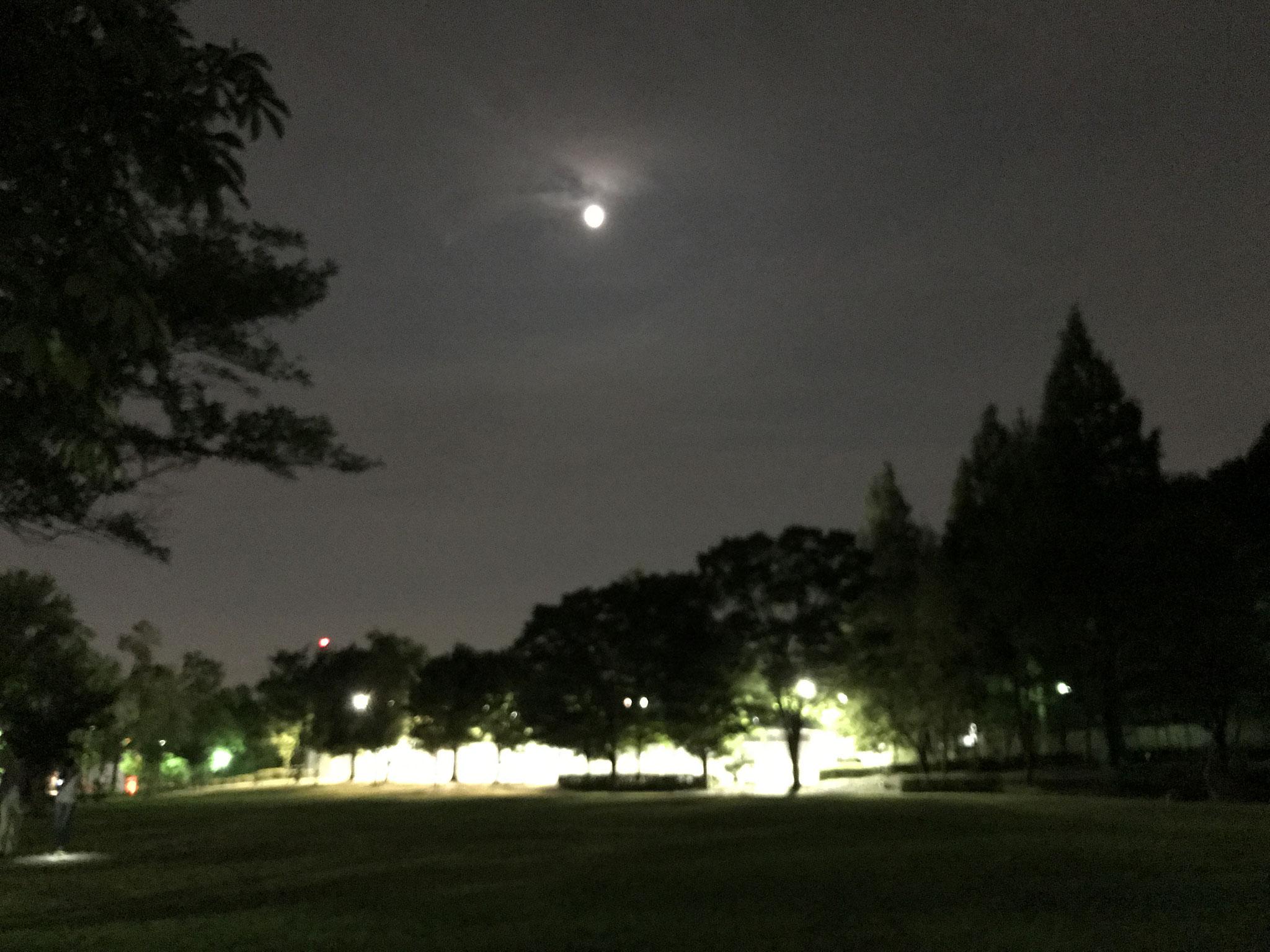 夜の城山公園(テニスコート付近)