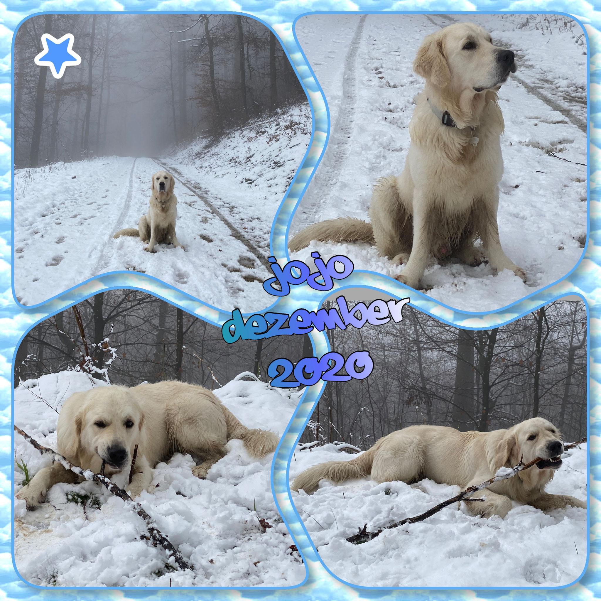 Endlich Schnee!! Da fängt die Lebeensfreude doch an!!