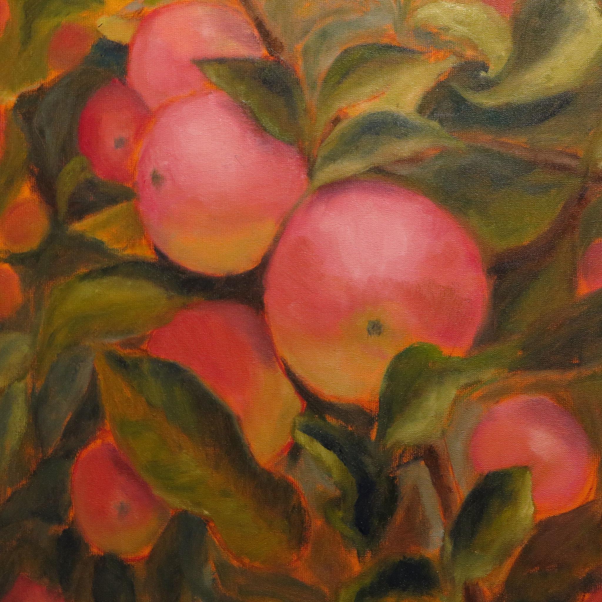 VERKOCHT Grote roze appels. 60x60cm. olie op linnen. 2019.
