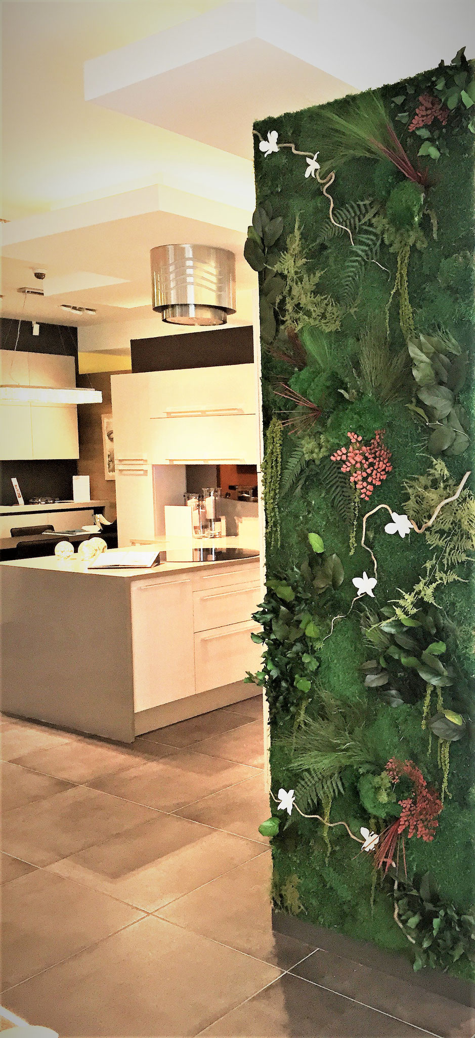 Magasin cuisine de france centre commercial l 39 atoll angers vegetal indoor mur v g tal - Atoll angers magasin ...