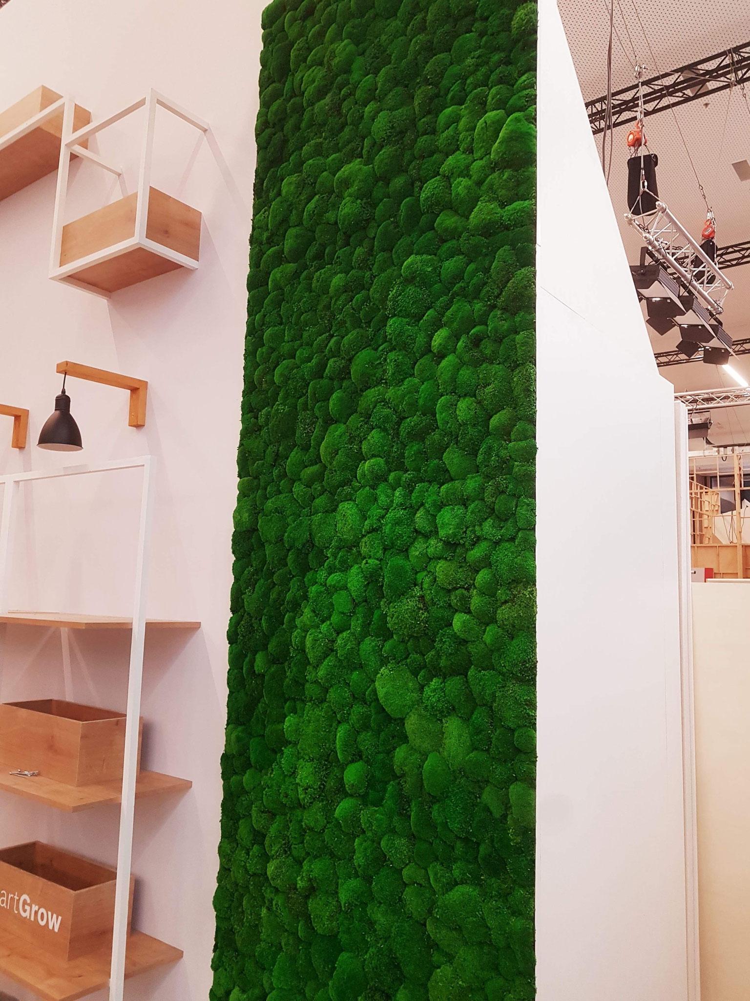Mur végétal en mousse boule stabilisée