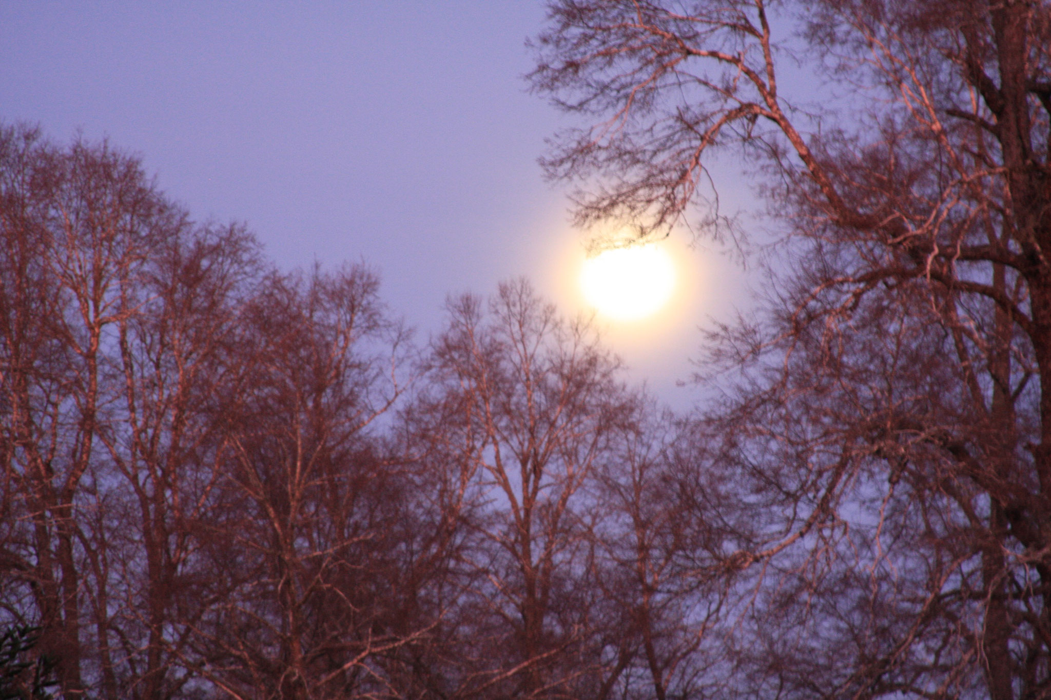 Full moon in winter time