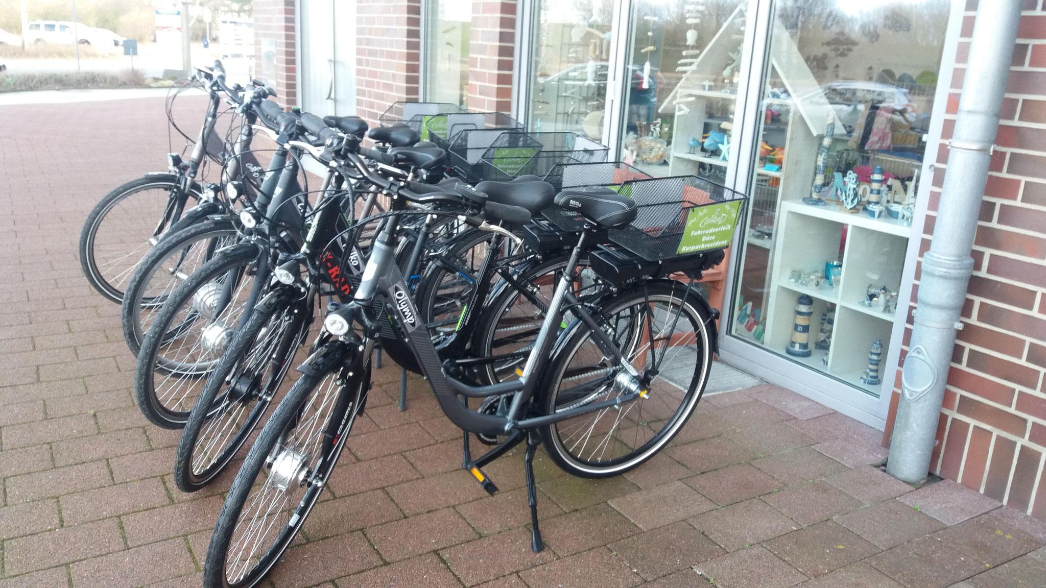 E-Bikes (Pedelec) Mittel- oder Frontmotor 7 Gänge