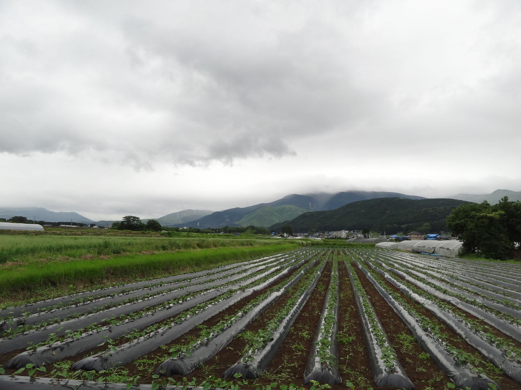 南阿曽村の風景