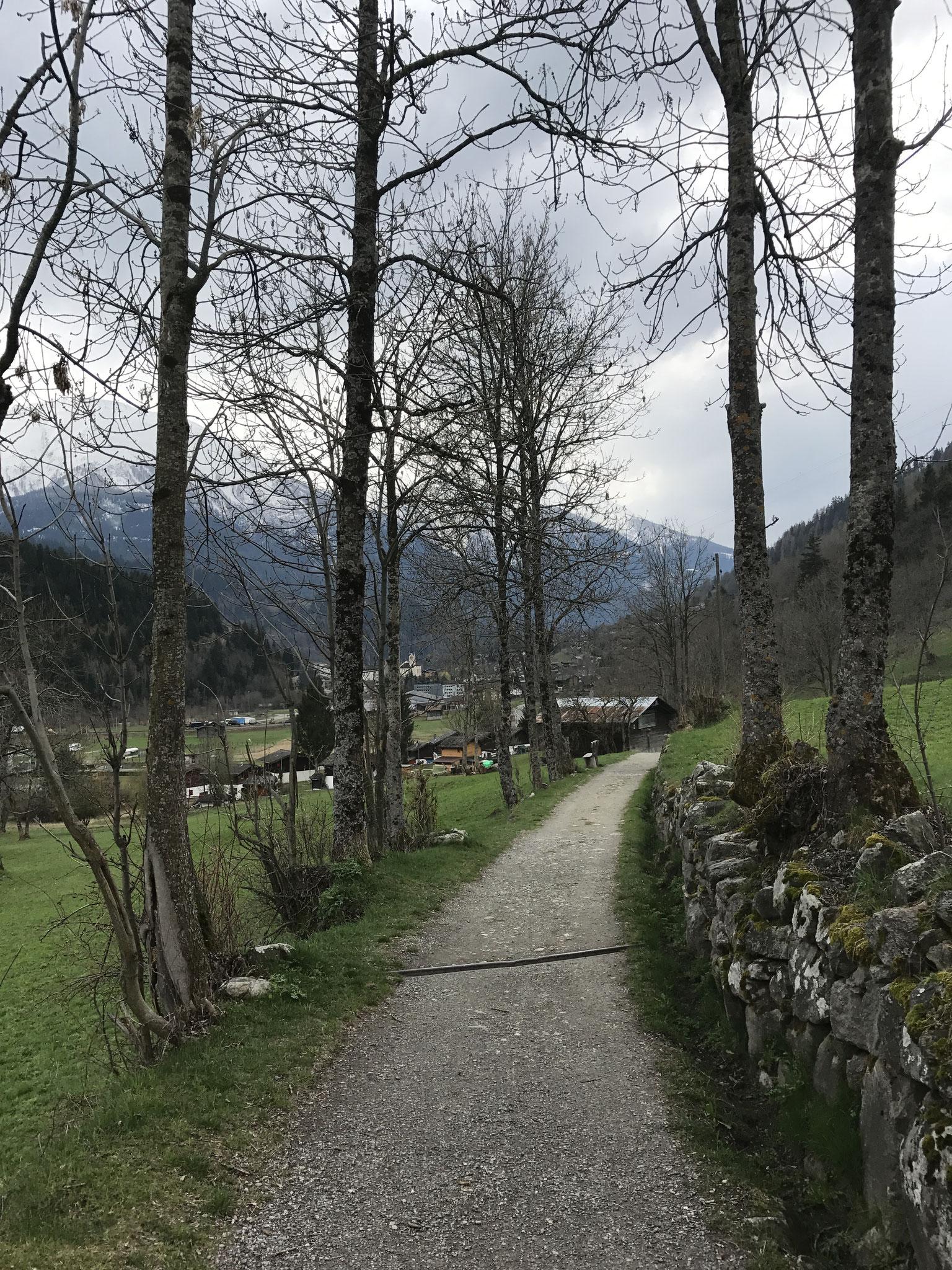 Wanderweg Lax-Fiesch-Fieschertal