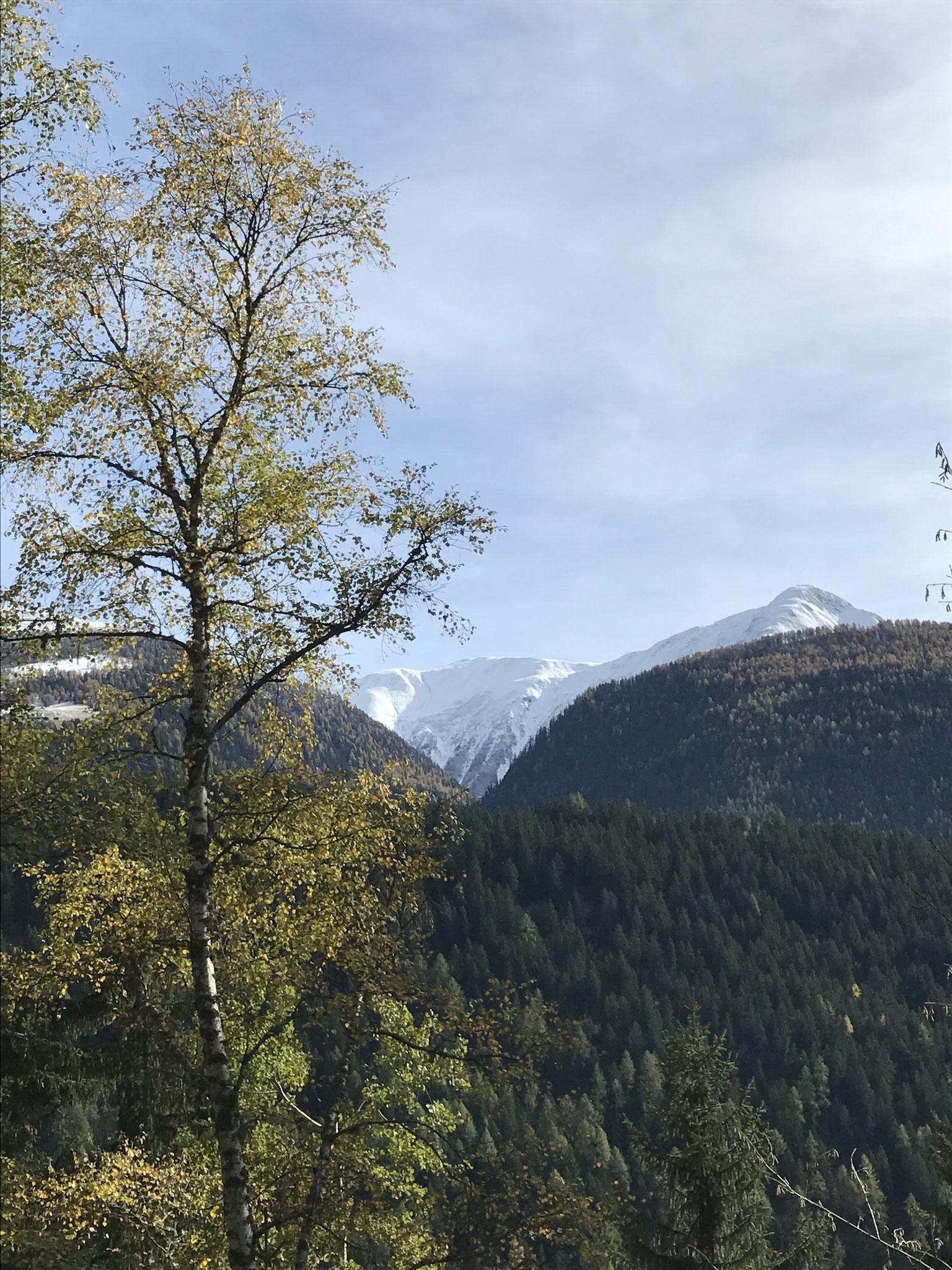 Suonenweg ob Fiesch mit Eggerhorn