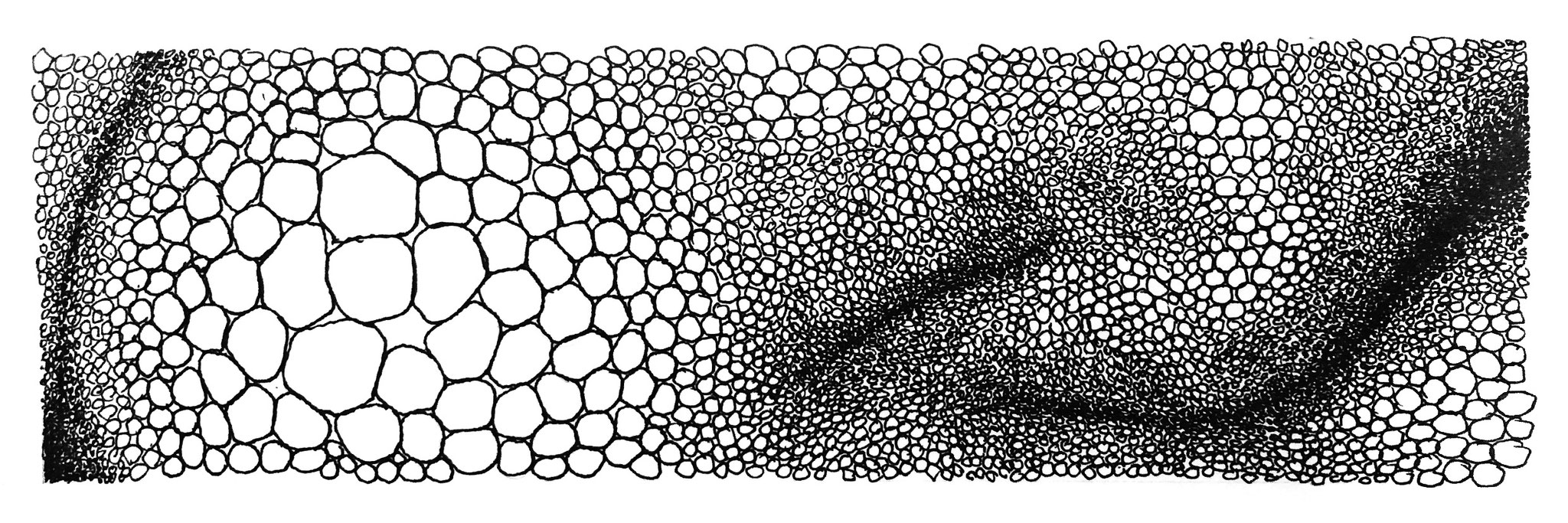 cluster 2 - Zeichnung Fineliner, 7/23 cm