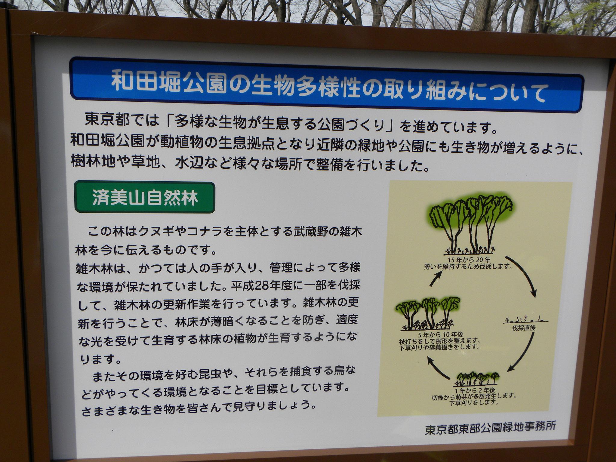 自然林 看板(伐採の説明)
