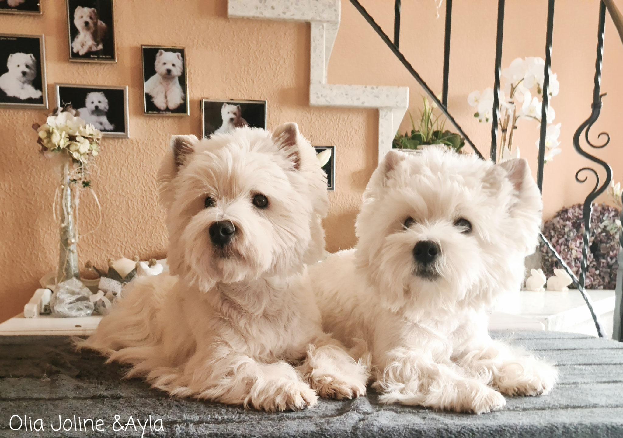 Olia Joline & Ayla 03/2021