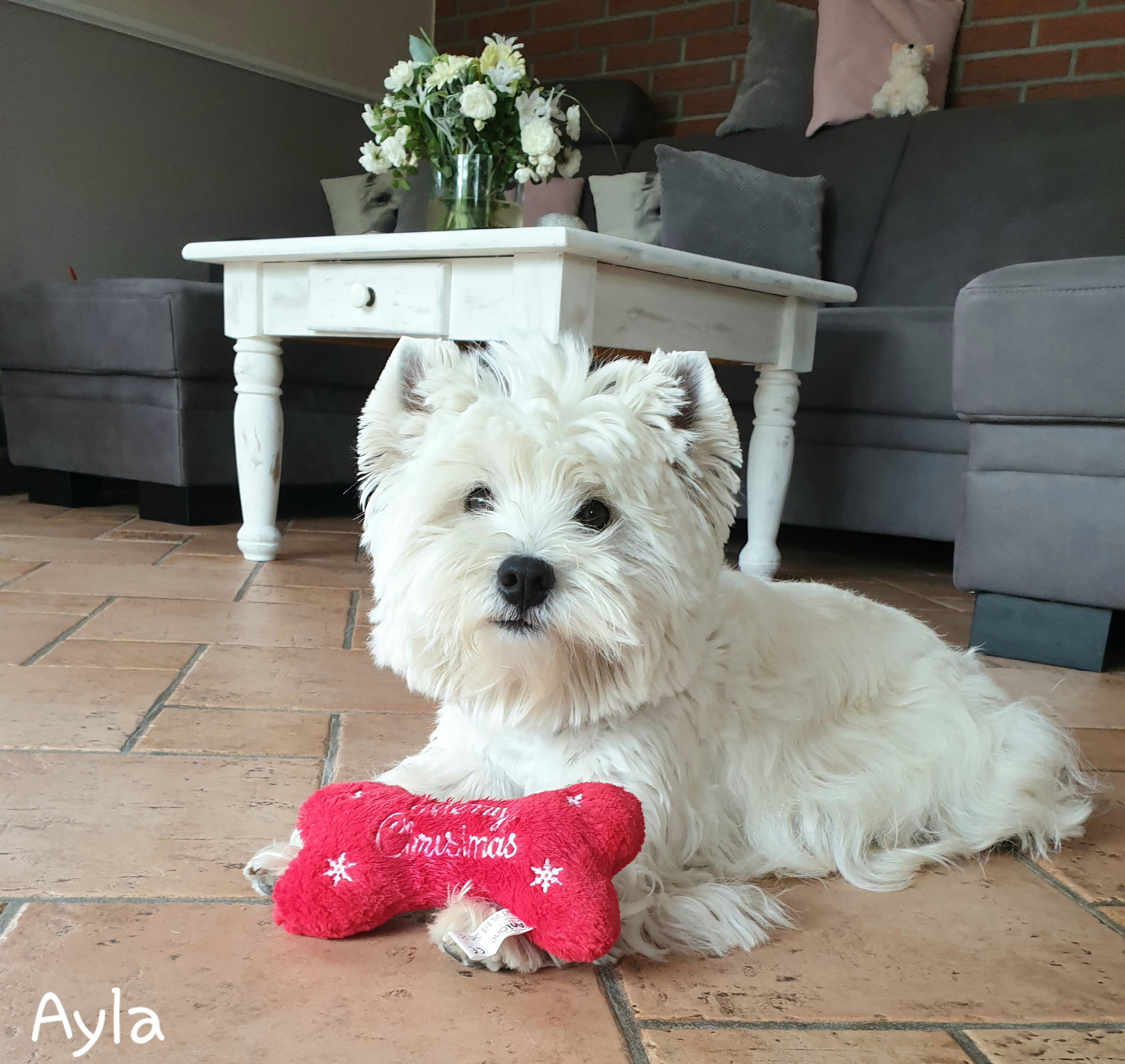 Ayla im August 2019