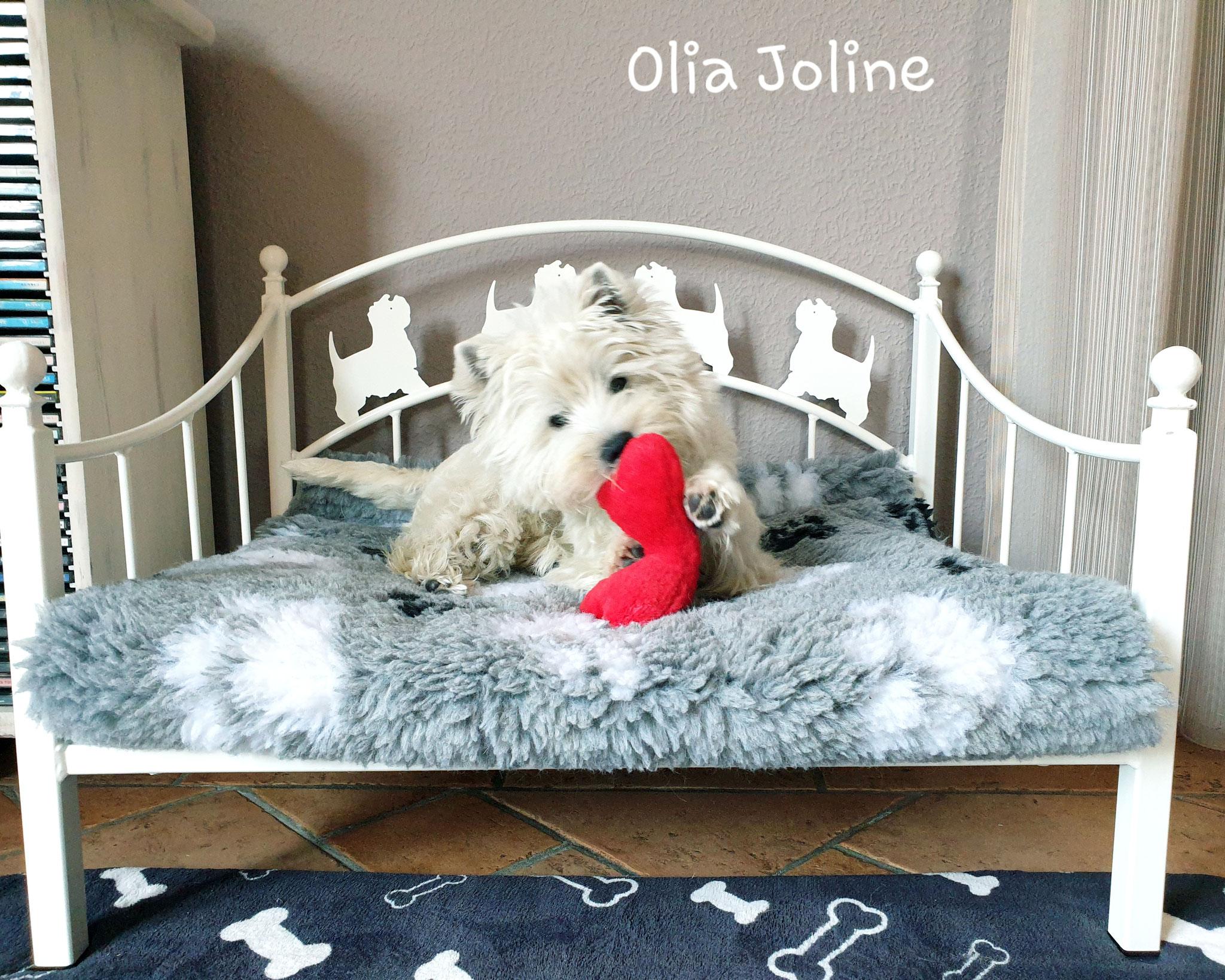 Olia Joline 08/2019