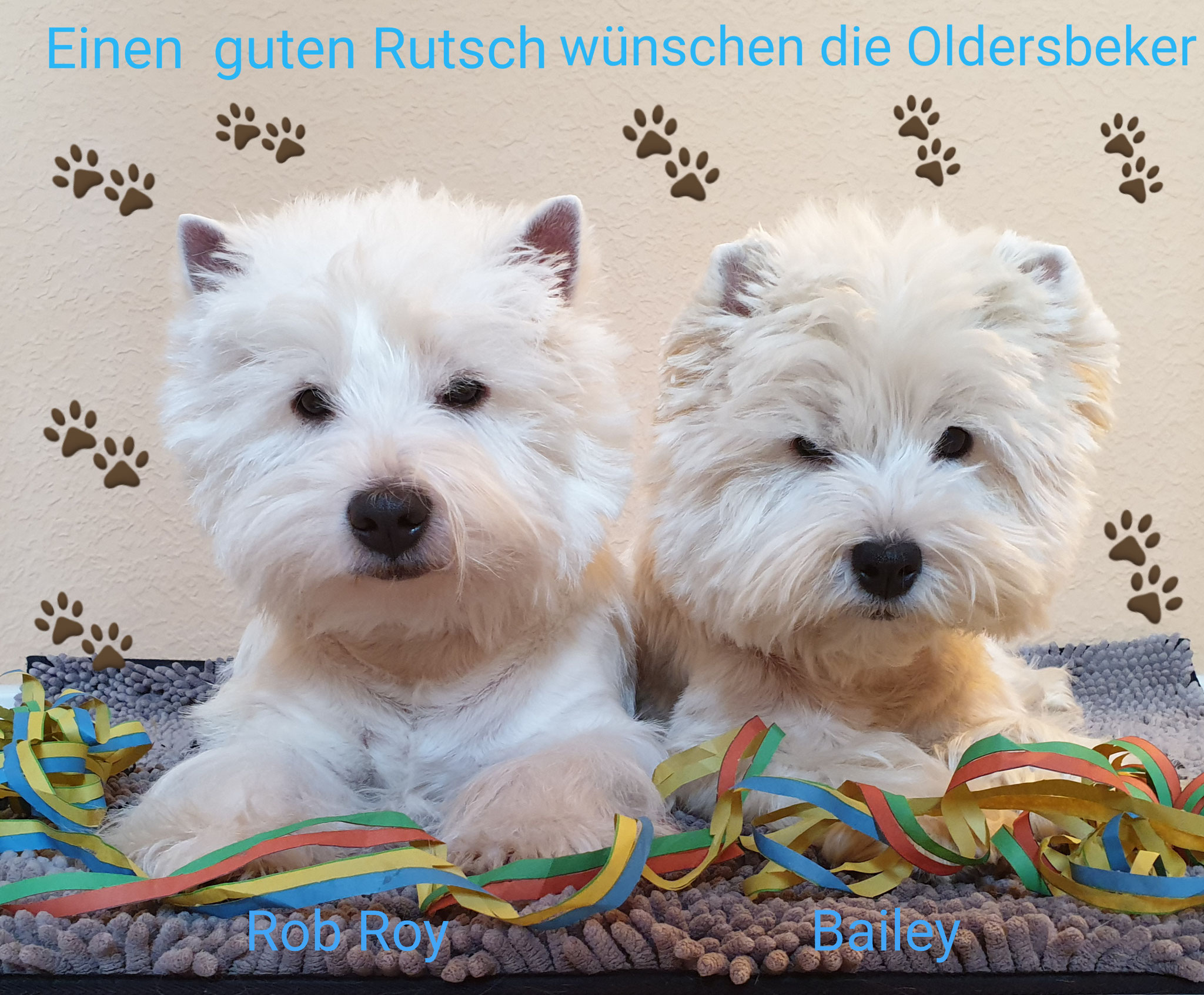 Rob Roy und Bailey Silvester 2019