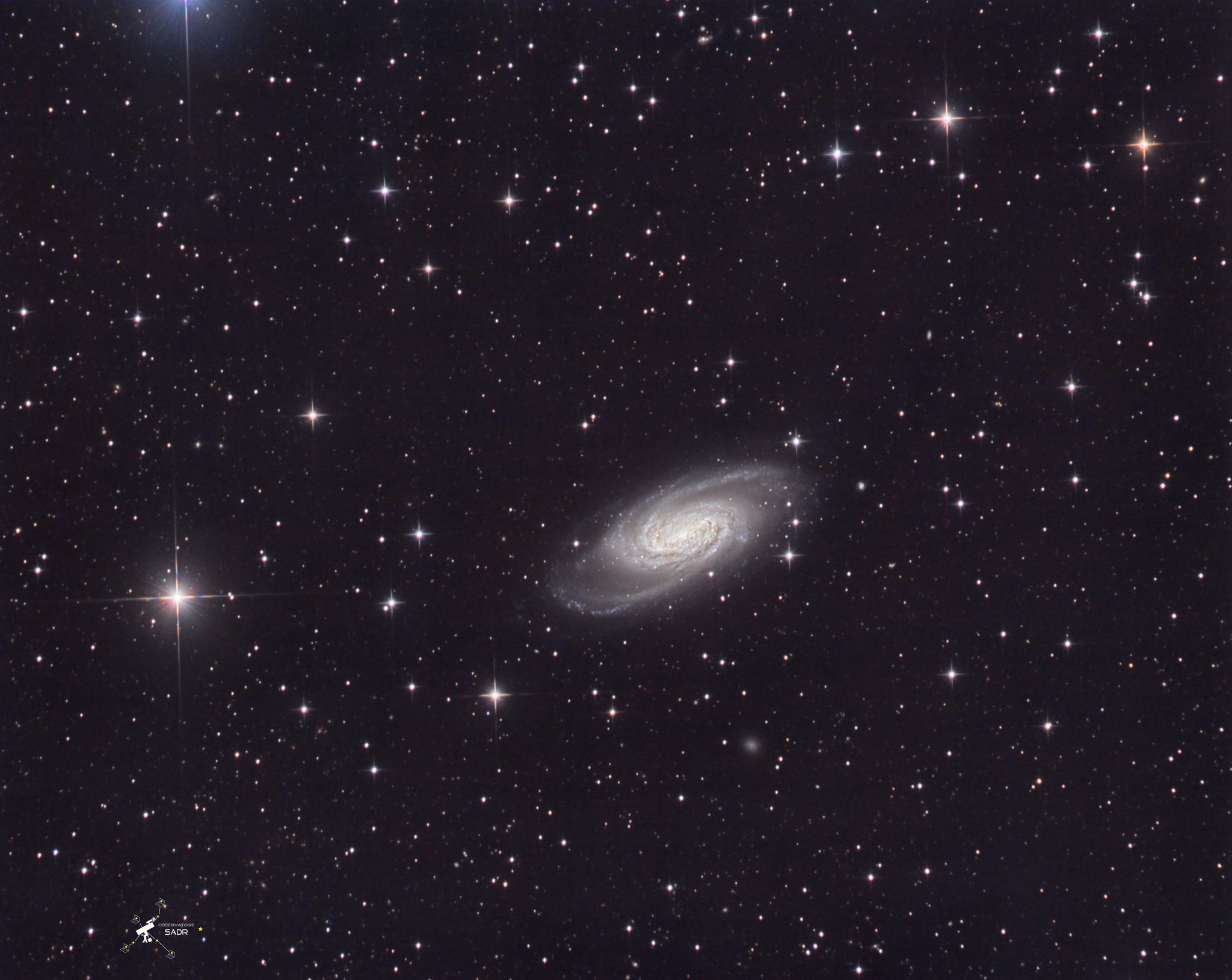 NGC2903 à 31 millions d'al dans la constellation du Lion. Des poses de 5 min en LRVB, T355, Chili, février 2019