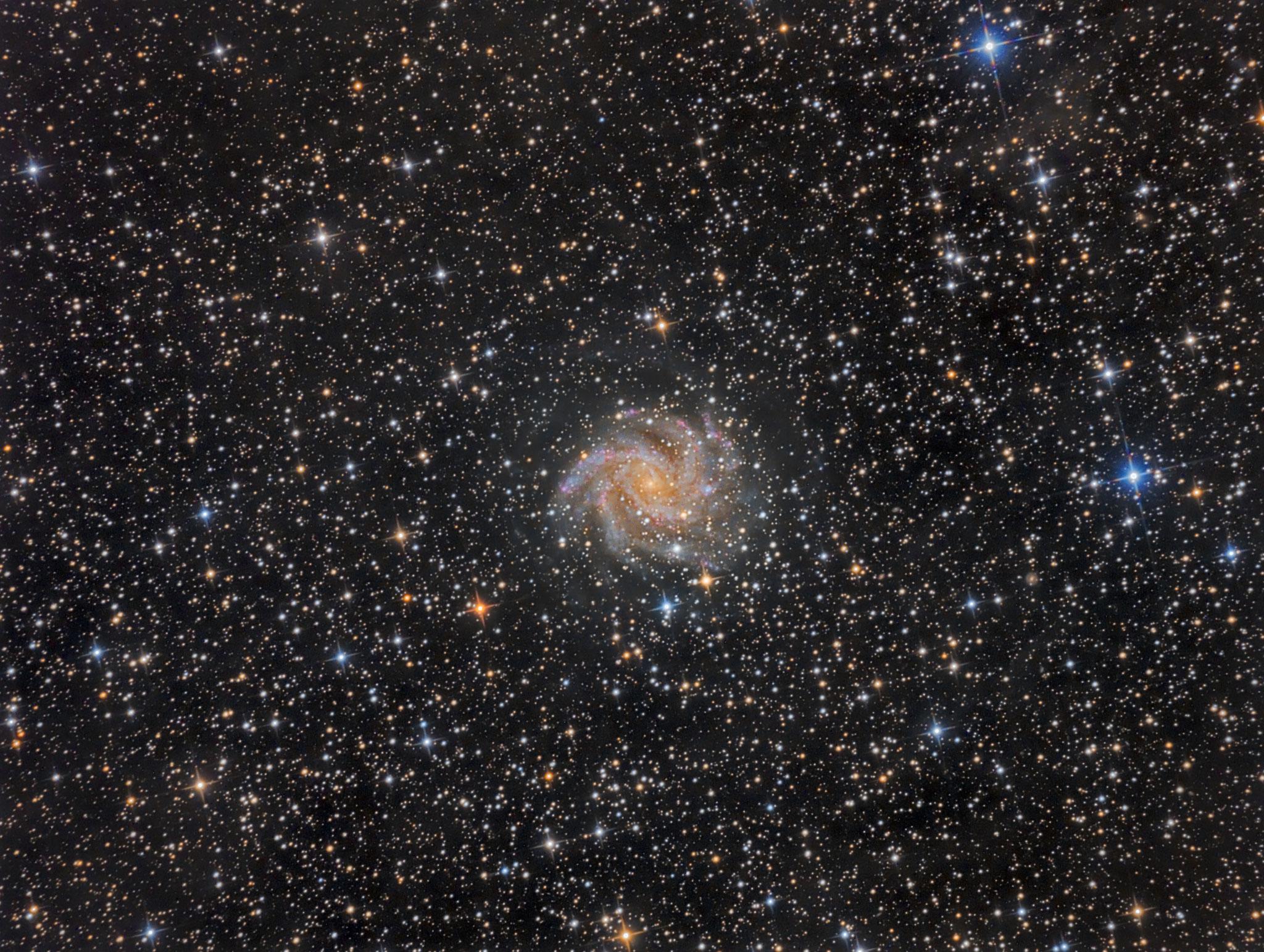 NGC6946, la galaxie du feu d'artifice, L (32x600 bin1), RVB (7x180 bin2), Nicolas, 2 septembre 2016