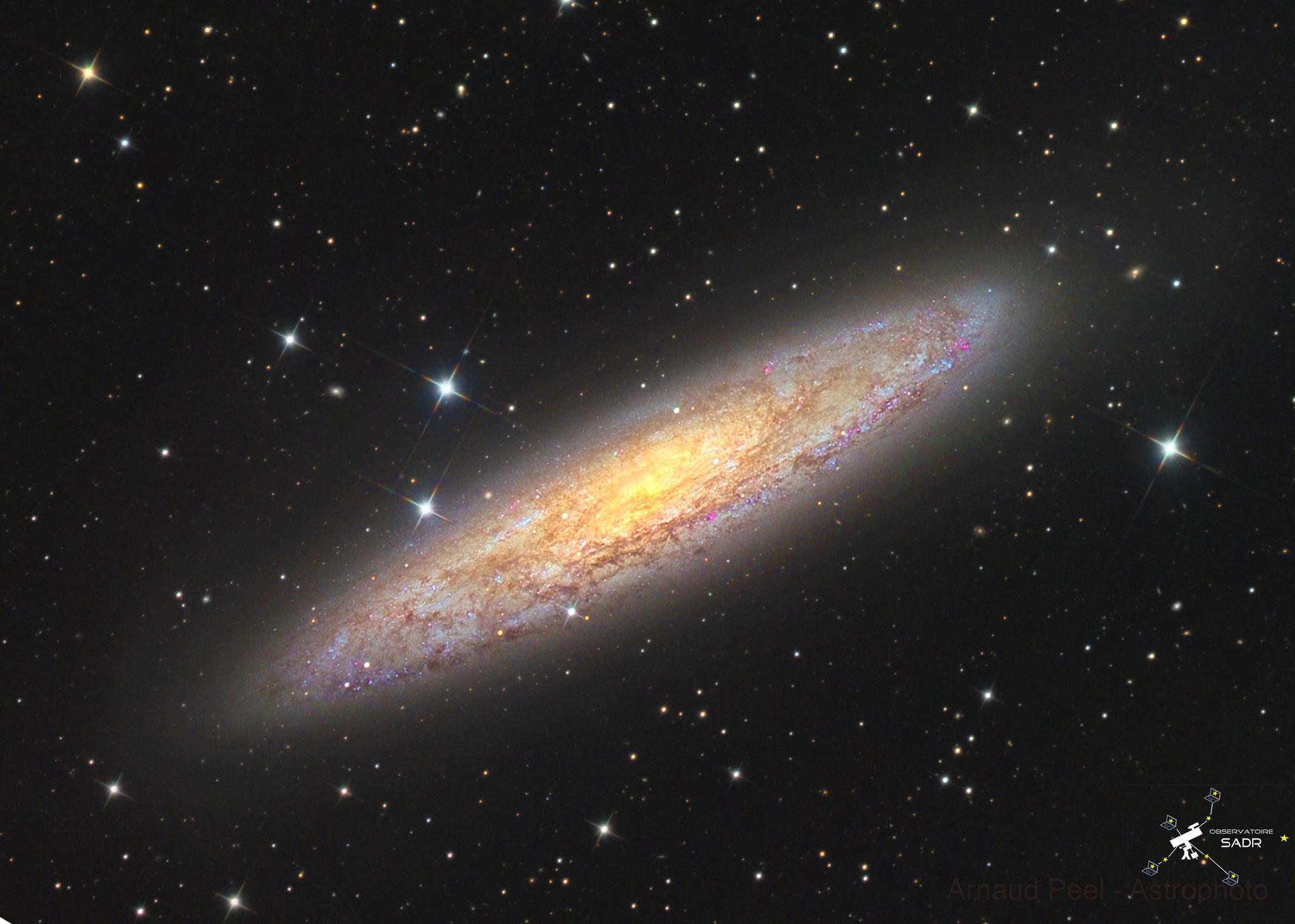 NGC253, la galaxie du Sculpteur, L(25x600), RVB (10x120 chaque), T355 mm, Sadr Chili, Arnaud