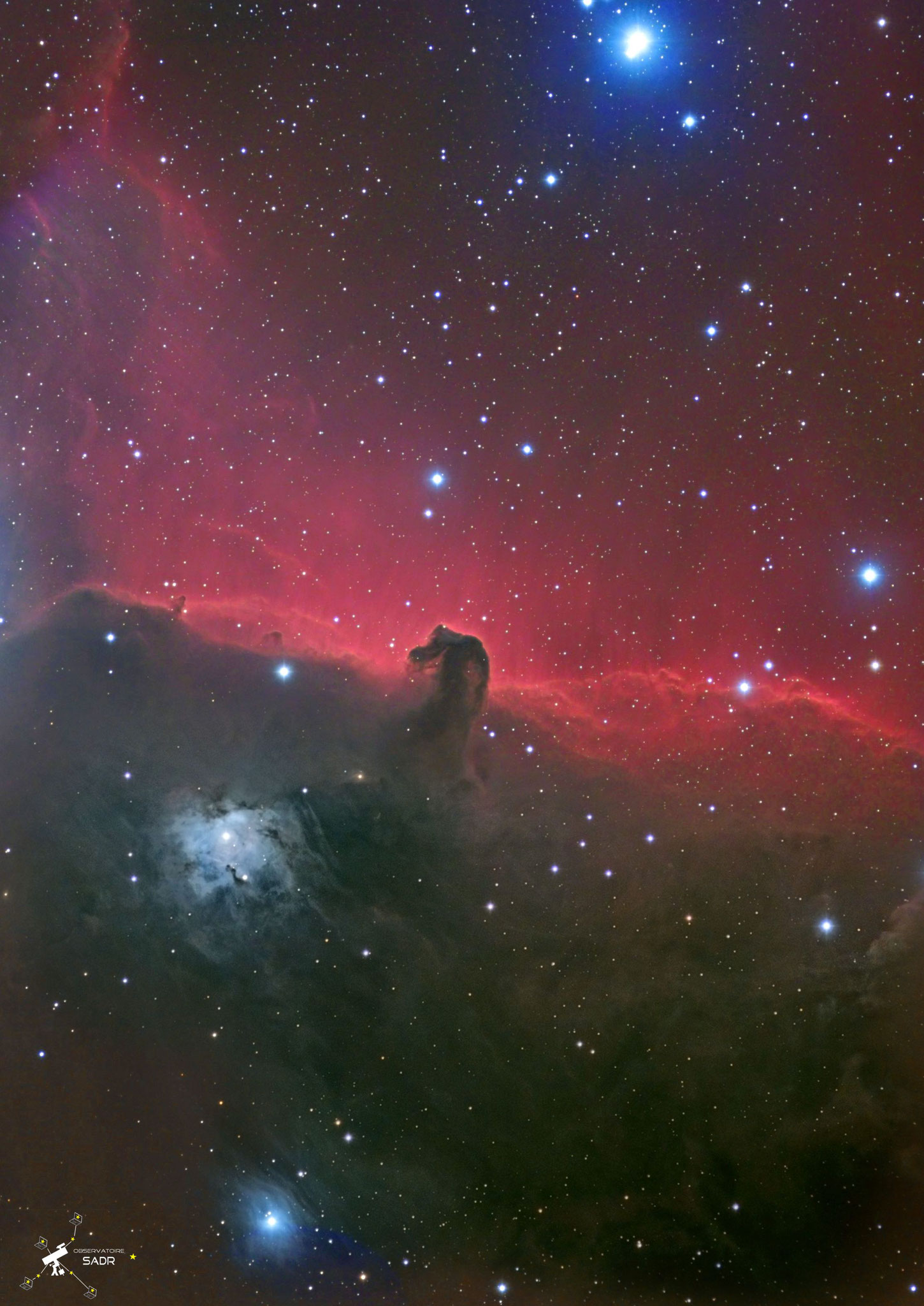 Barnard 33, la tête de cheval, L127, HaLRVB = 19h05, LSD Team, Sadr Chili