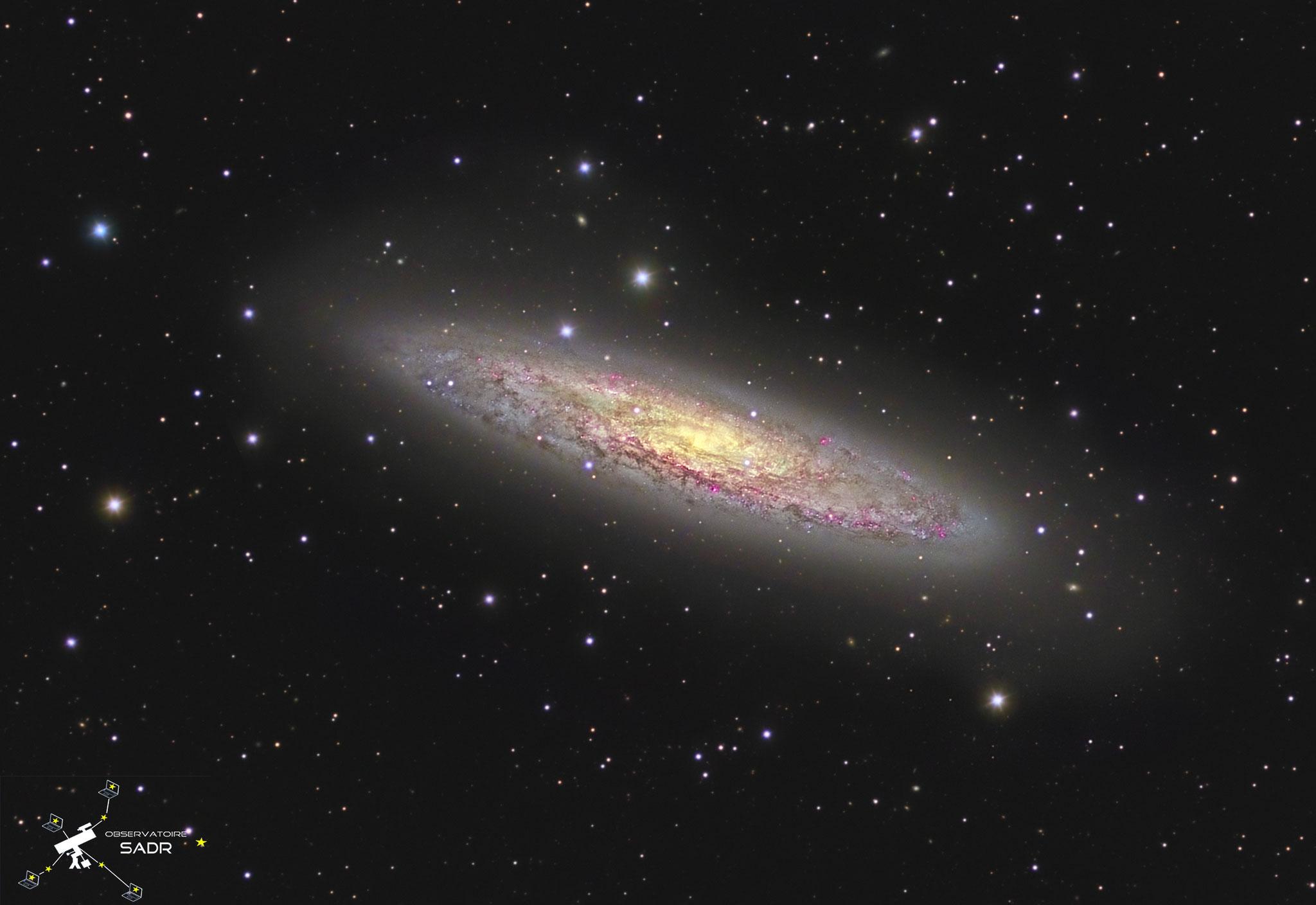 NGC253, la galaxie du Sculpteur, Ha,L, RVB (25, 71, 19, 15, 15 x 5min = 12h05), lunette 127 mm, Sadr Chili, Arnaud