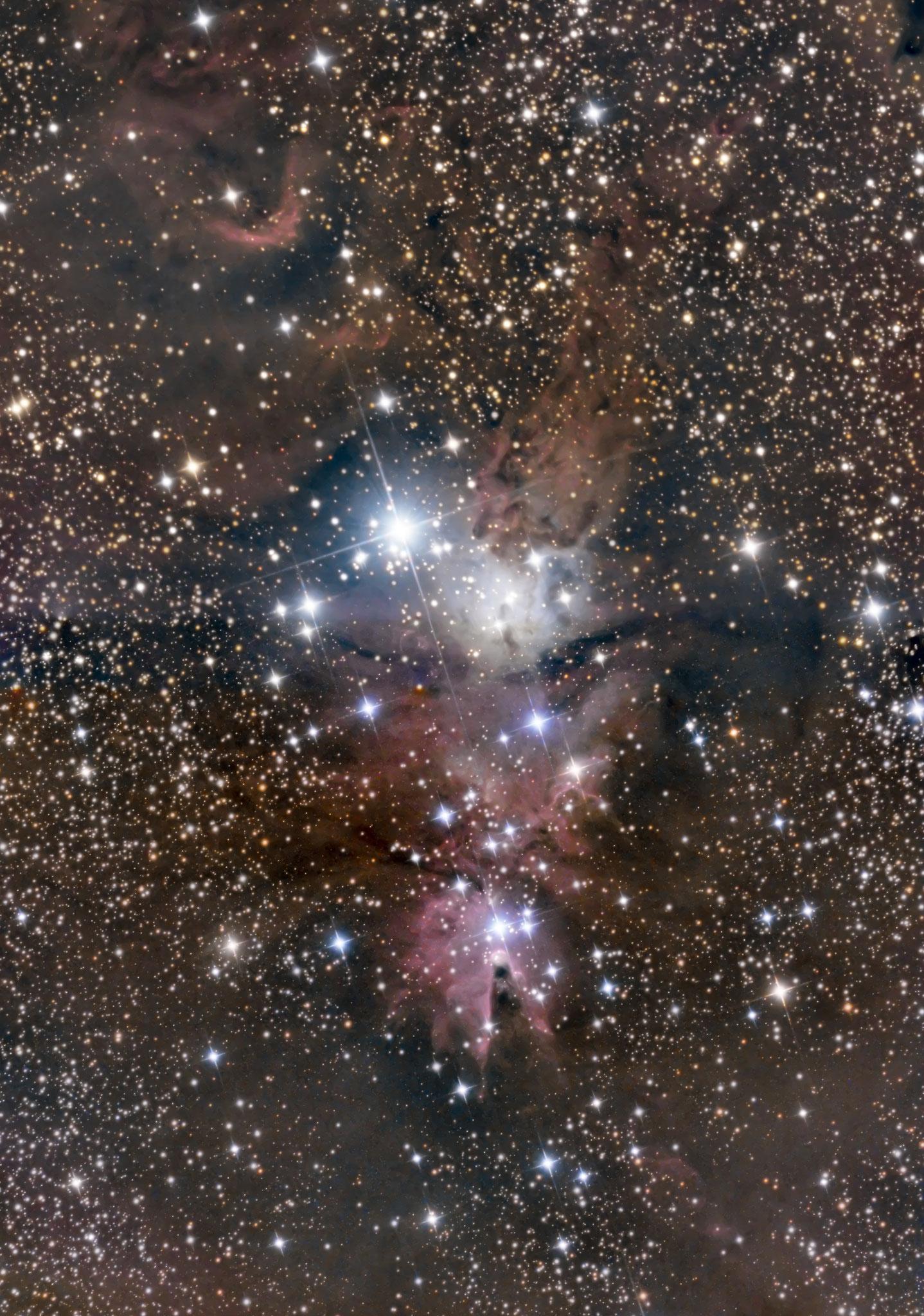 NGC2264, la nébuleuse du cône à 2700 al, constellation de la Licorne, janvier 2017, Fabien