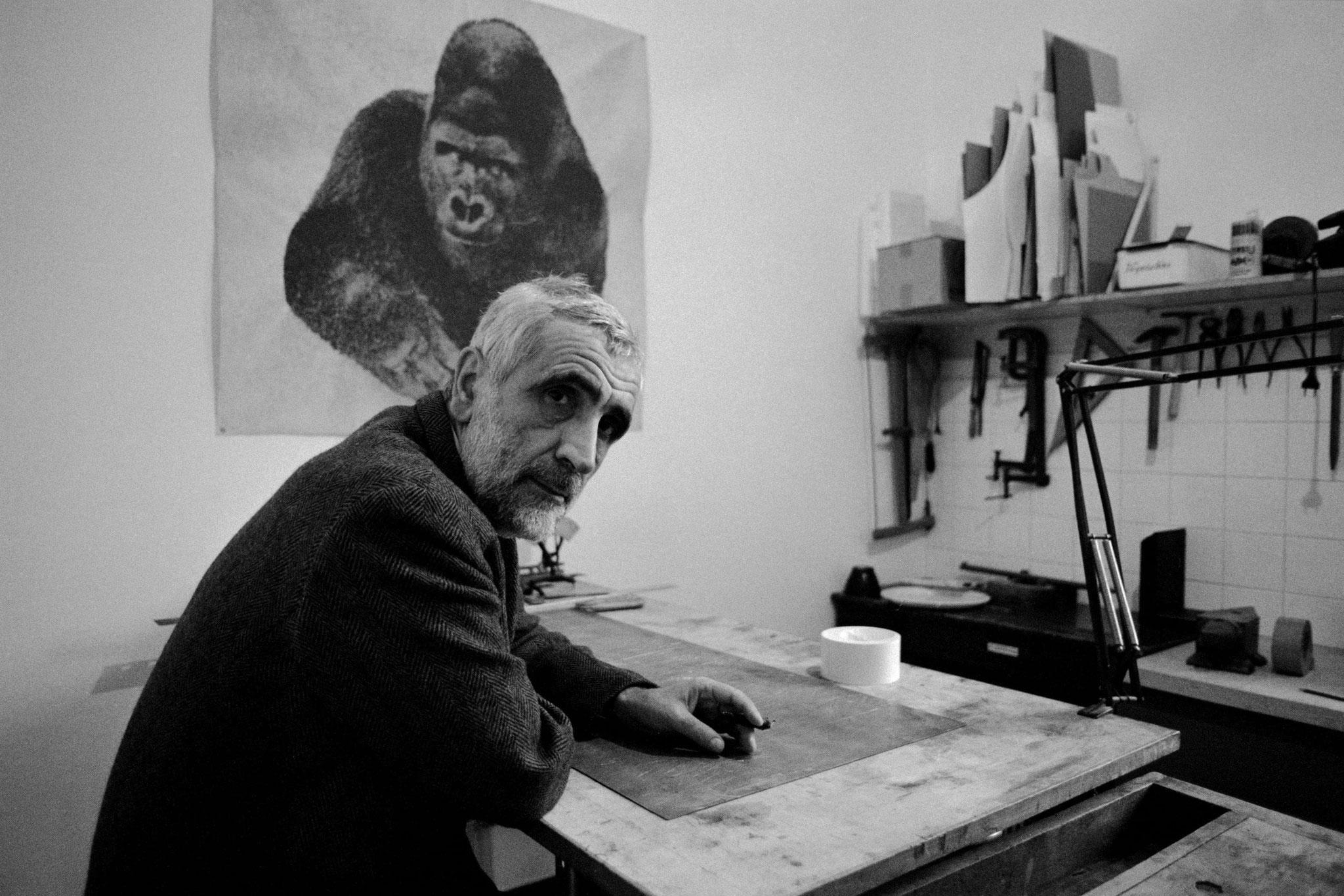 Mostra di Enzo Mari Triennale Milano