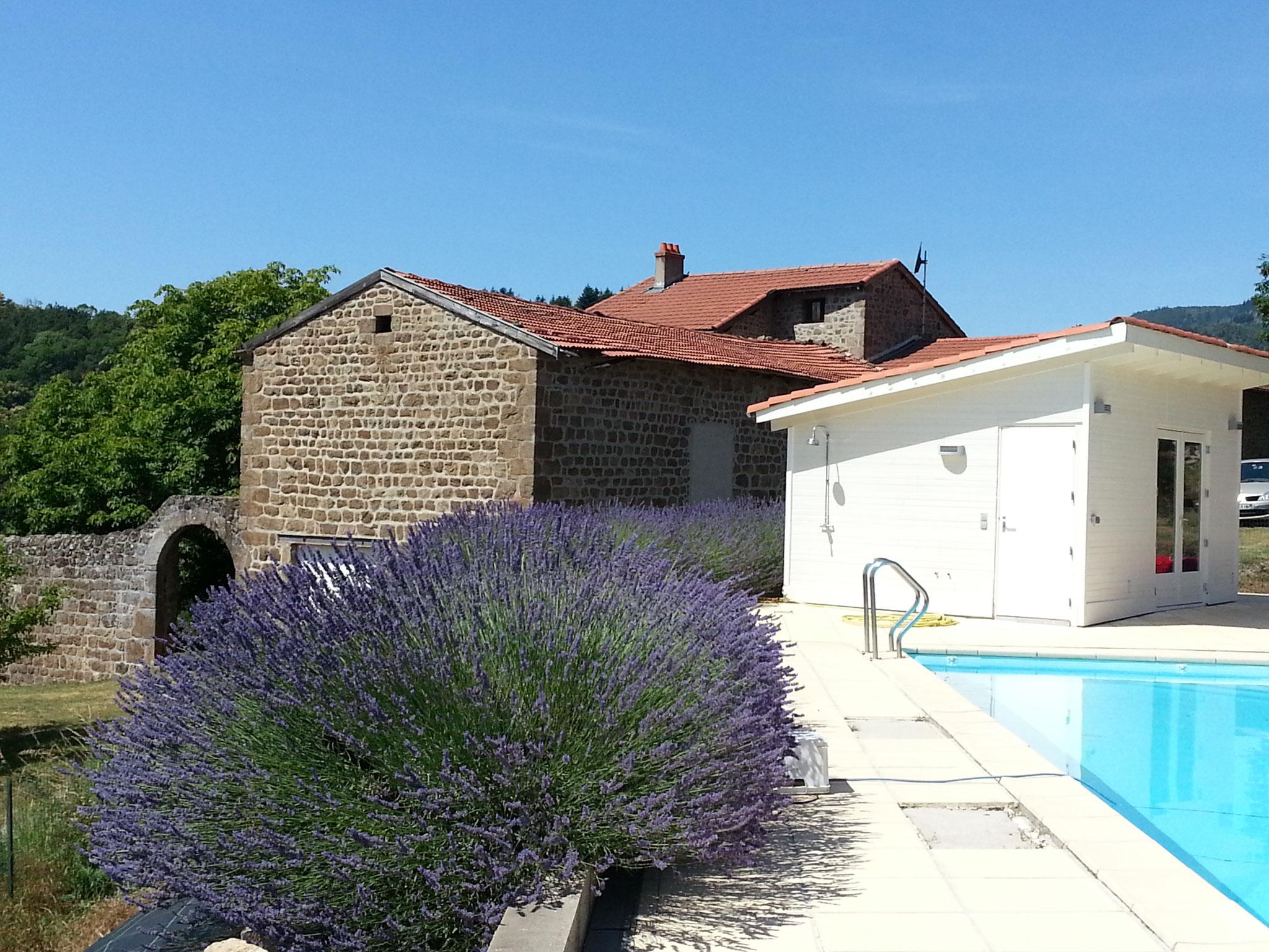 het vakantiehuis met zwembad en lavendel