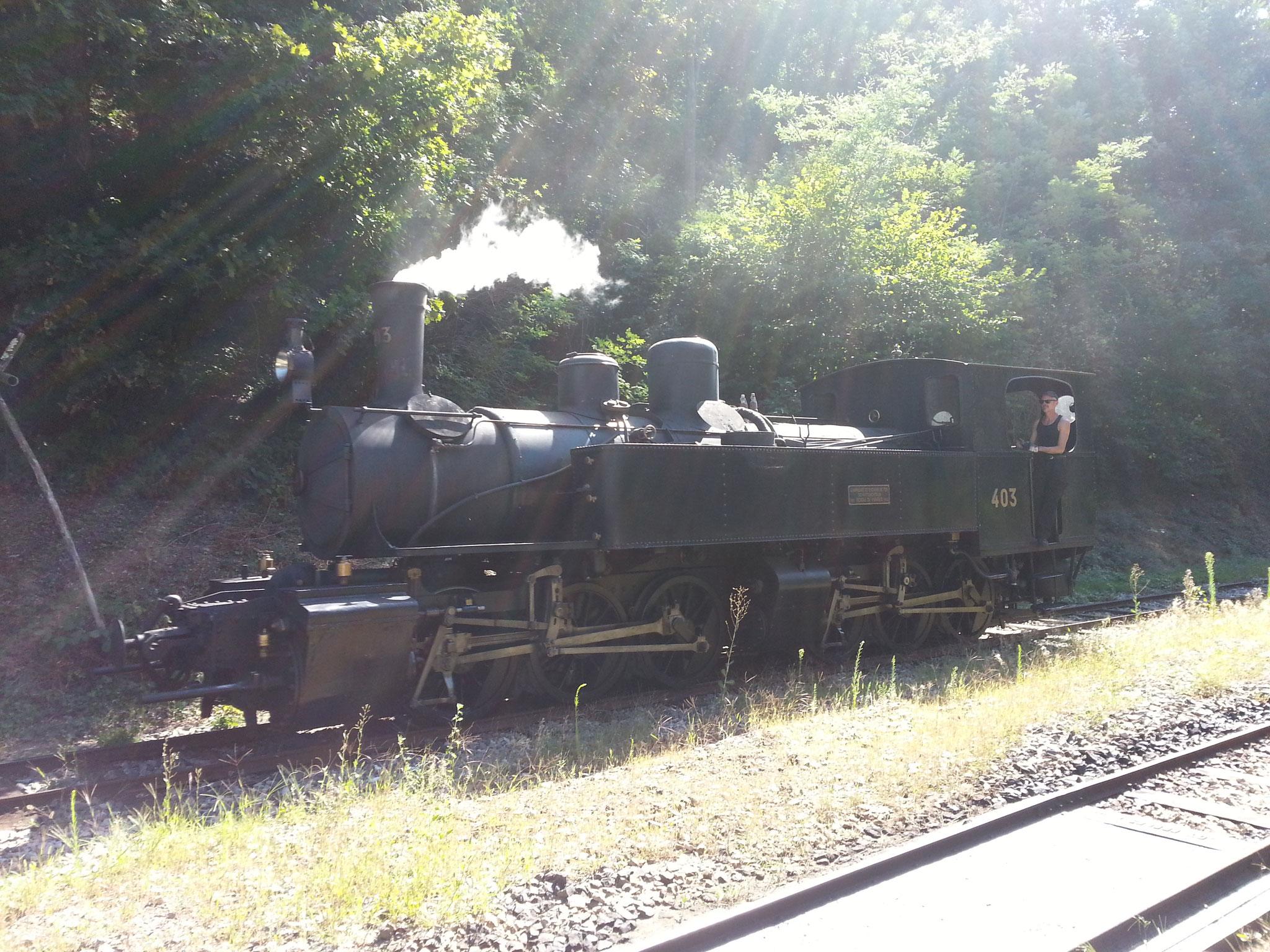 De trein door de Gorges du Doux