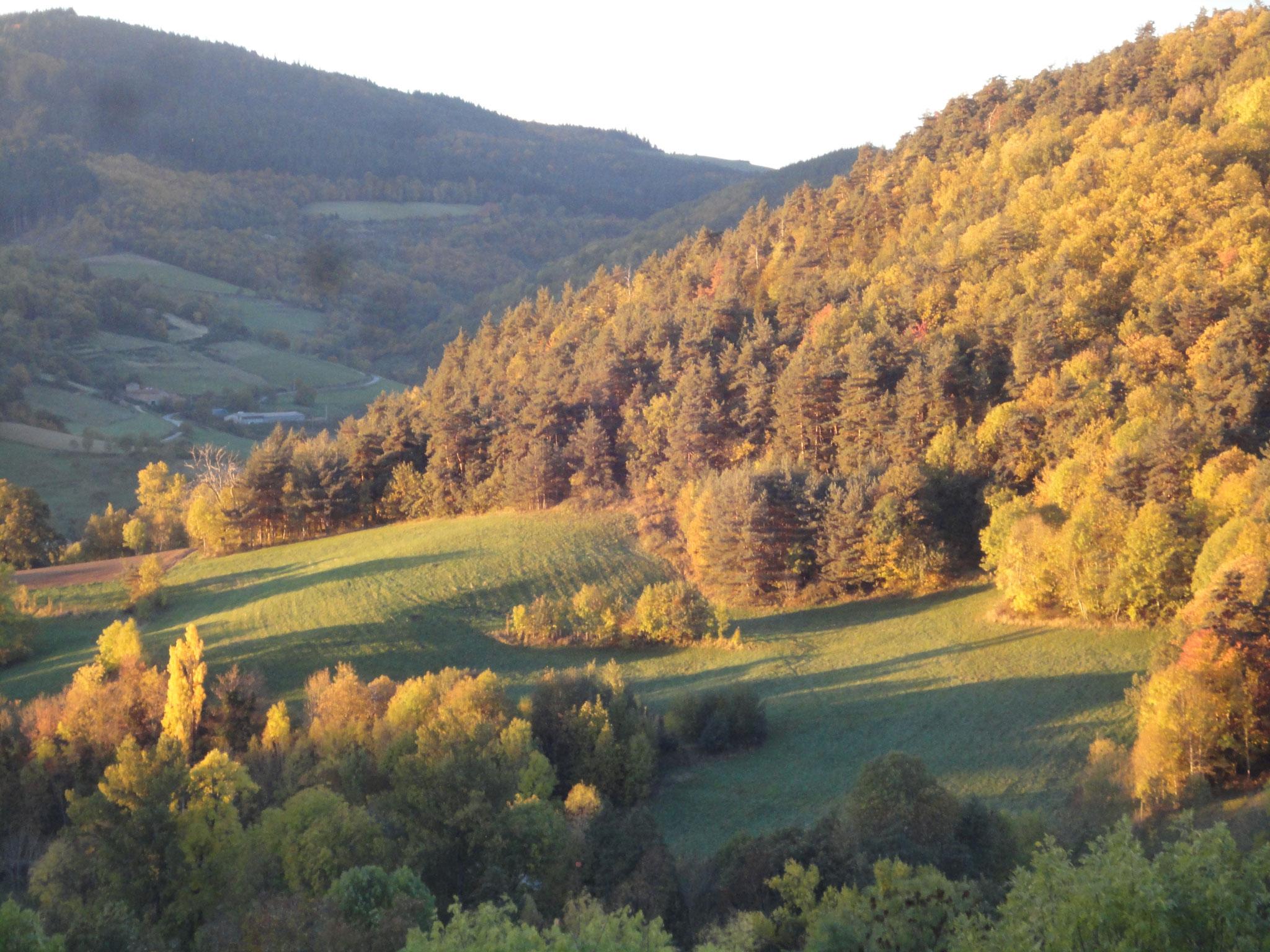 uitzicht vanuit het vakantiehuis in de herfst