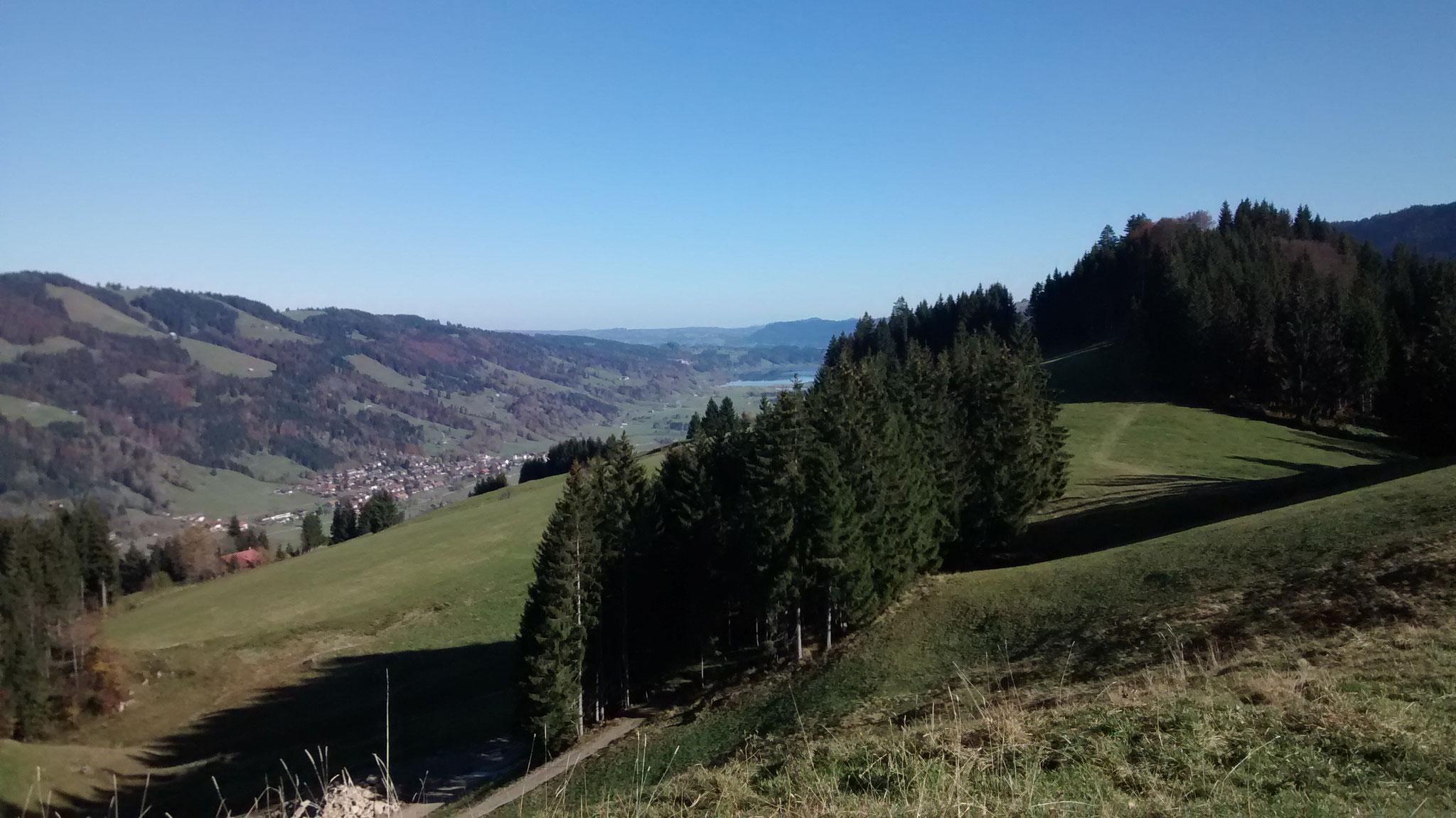 Auf dem Hündle mit Blick zum Alpsee