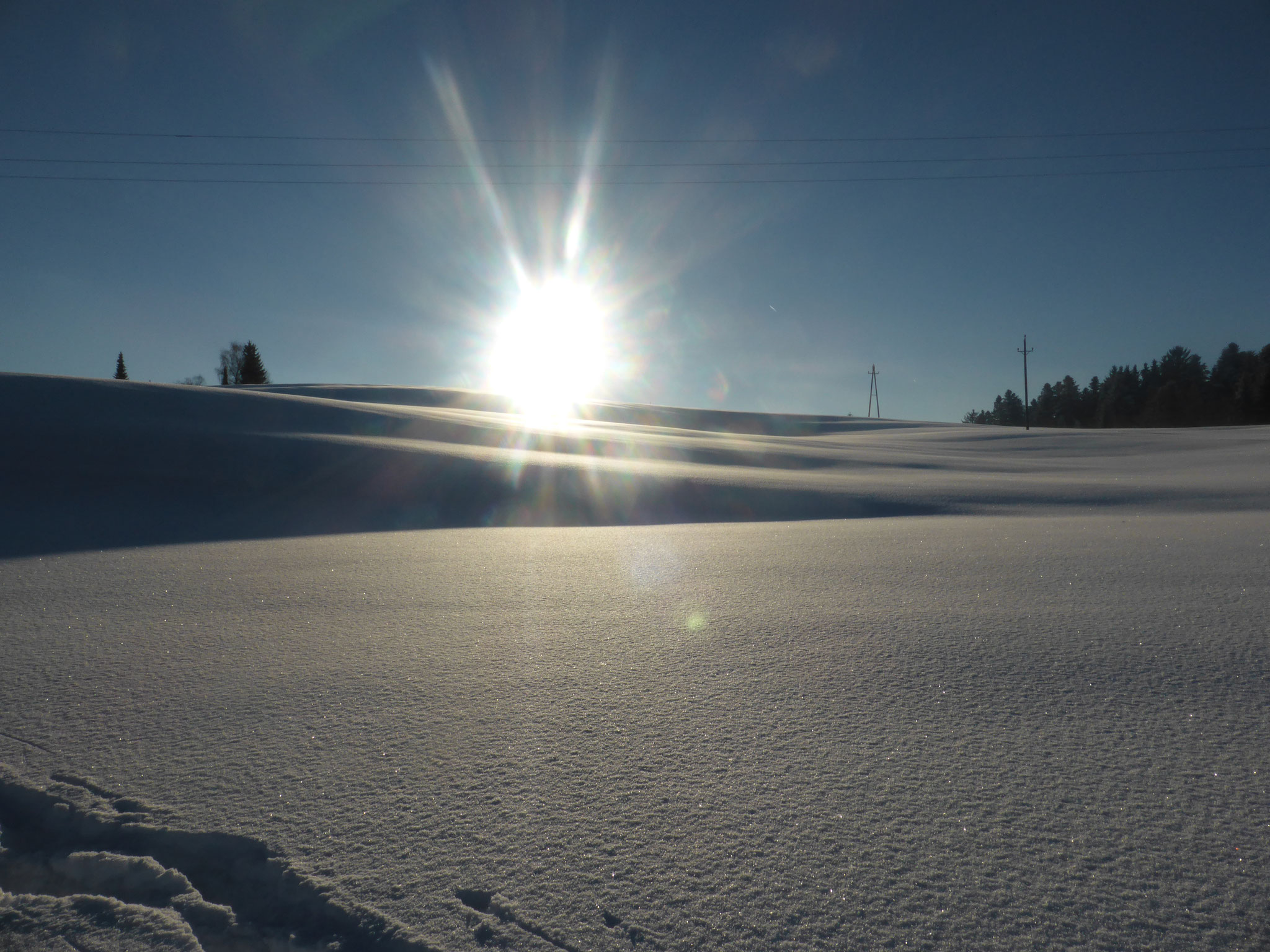 Winterwanderung querfeldein
