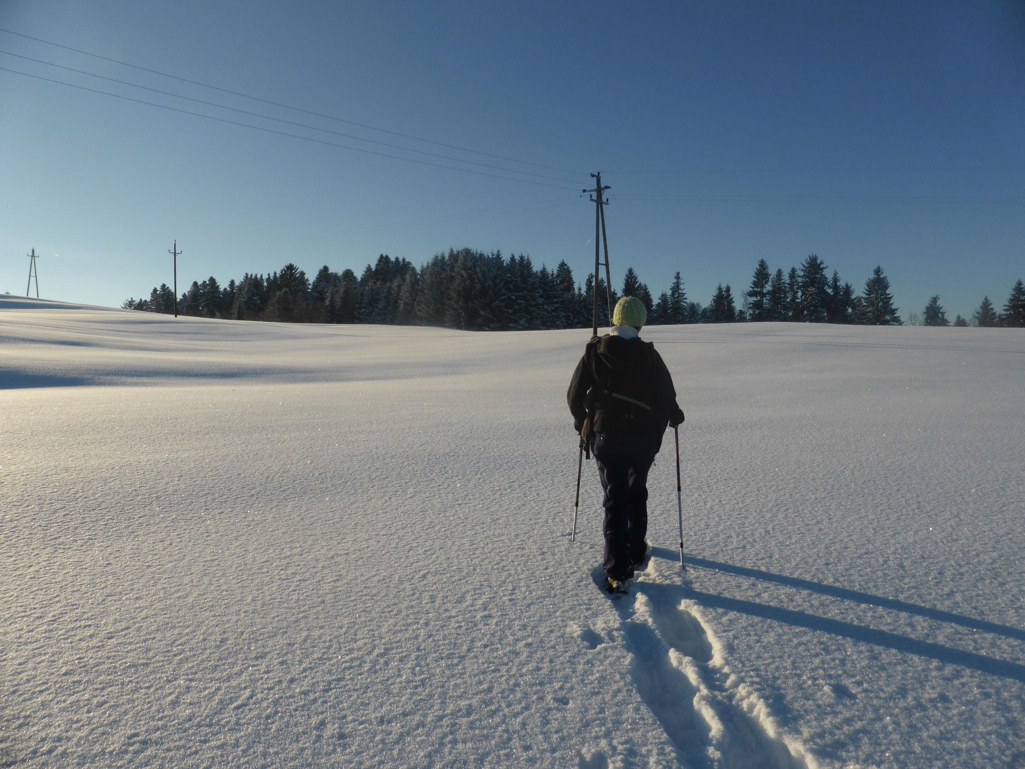 Schneeschuhwandern hinterm Haus