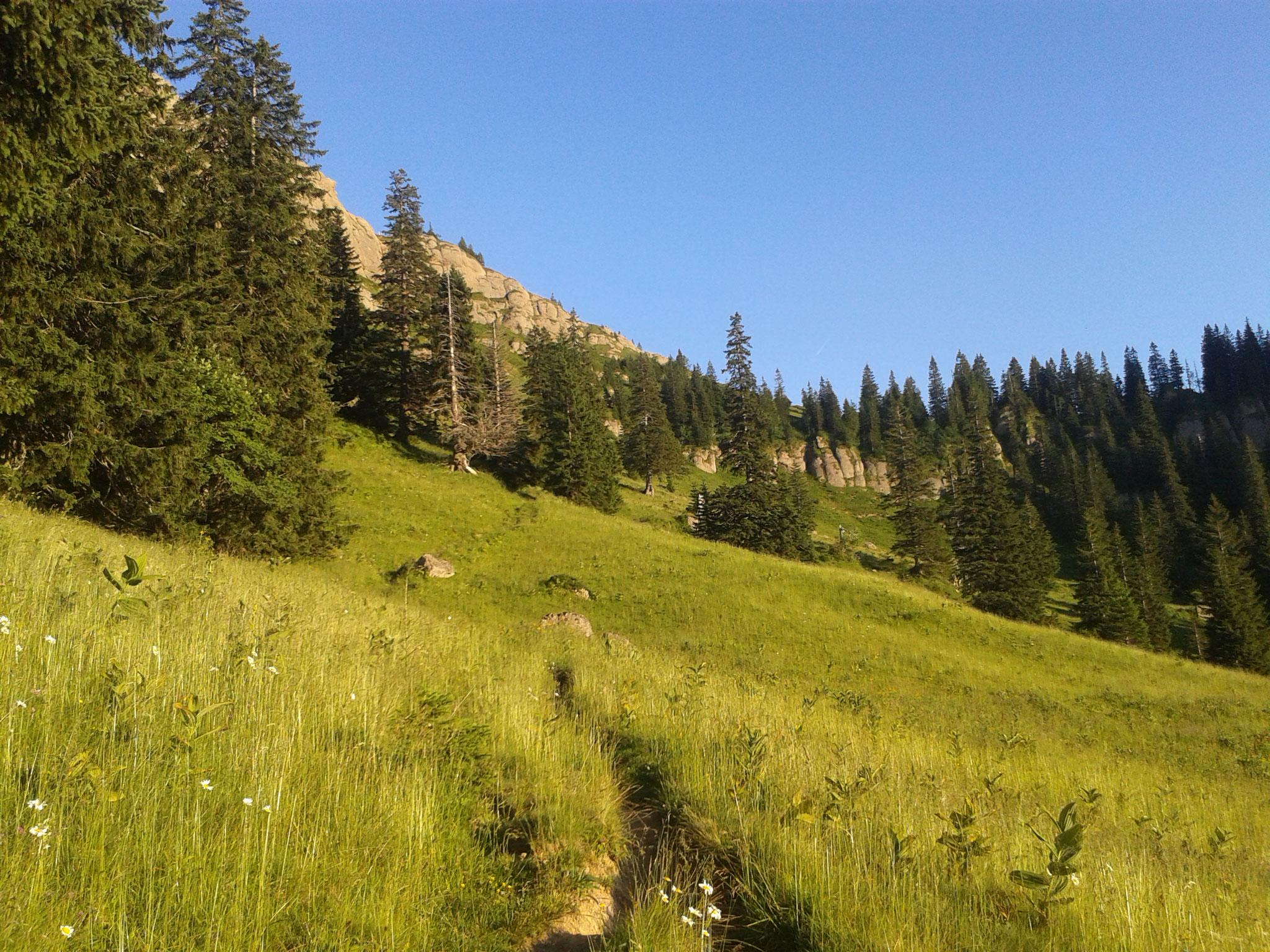 Wanderung zum Rindalphorn