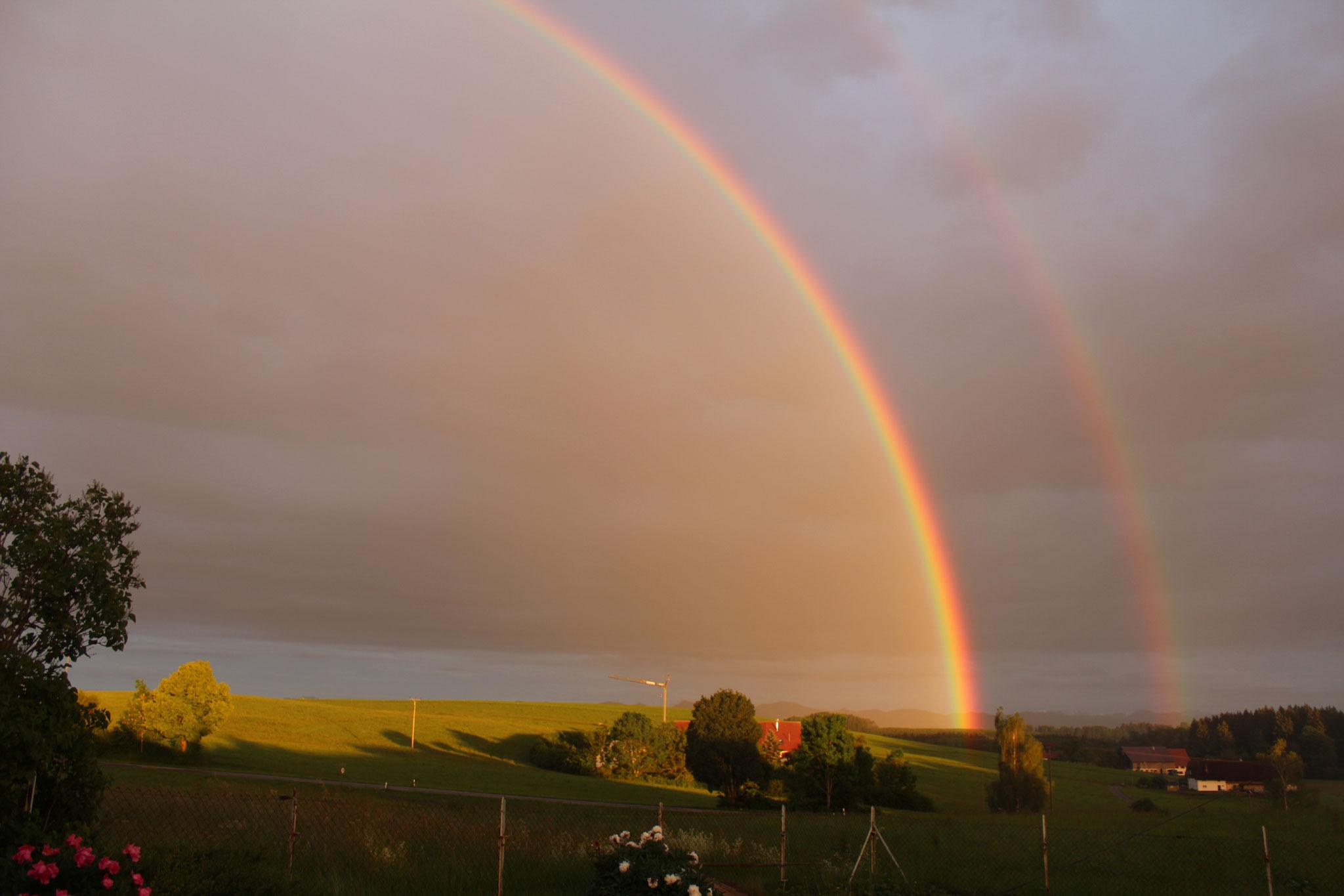 ...unterm Regenbogen