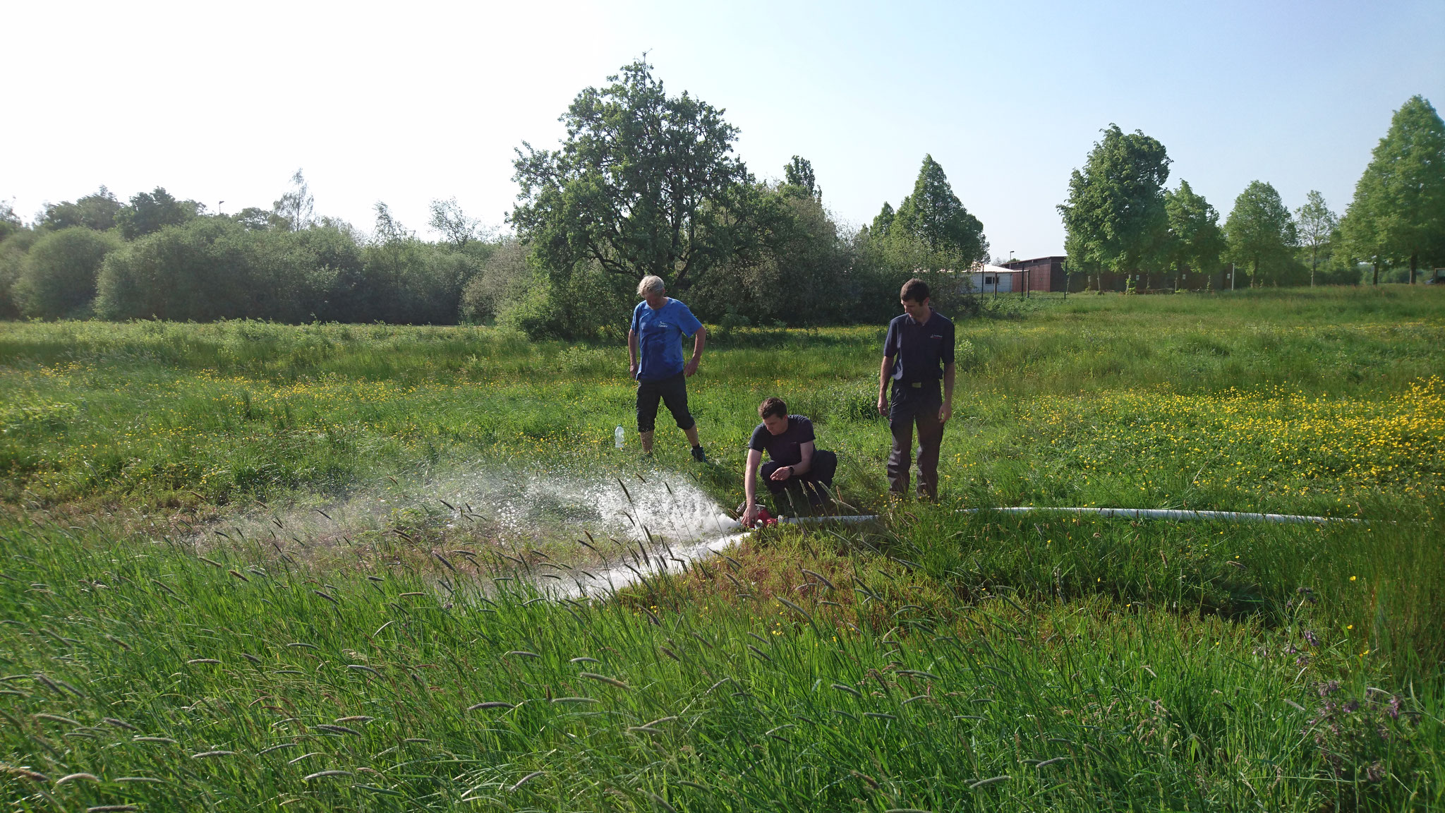 Die Bewässerungsaktion der Gräben schützt die Amphibien vor der Austrocknung.