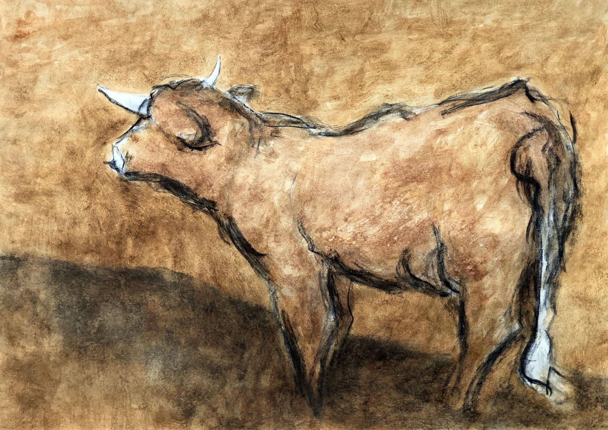 RETINTO XIX    Erden, Tintensekret vom Kalmar und Olivensaft auf Papier - 49 x 69 cm