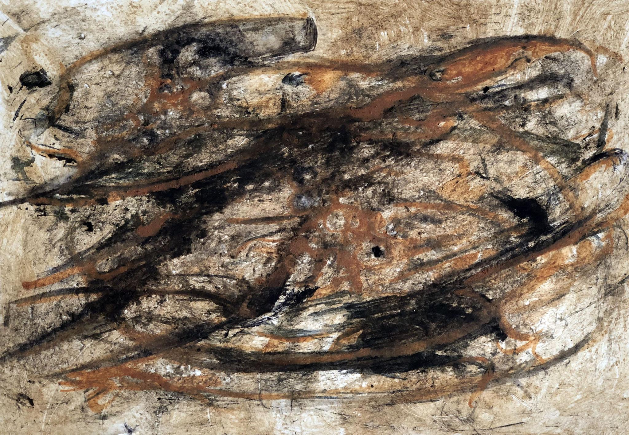 RETINTO VI    Erden, Tintensekret vom Kalmar und Olivensaft auf Papier - 21 x 29 cm