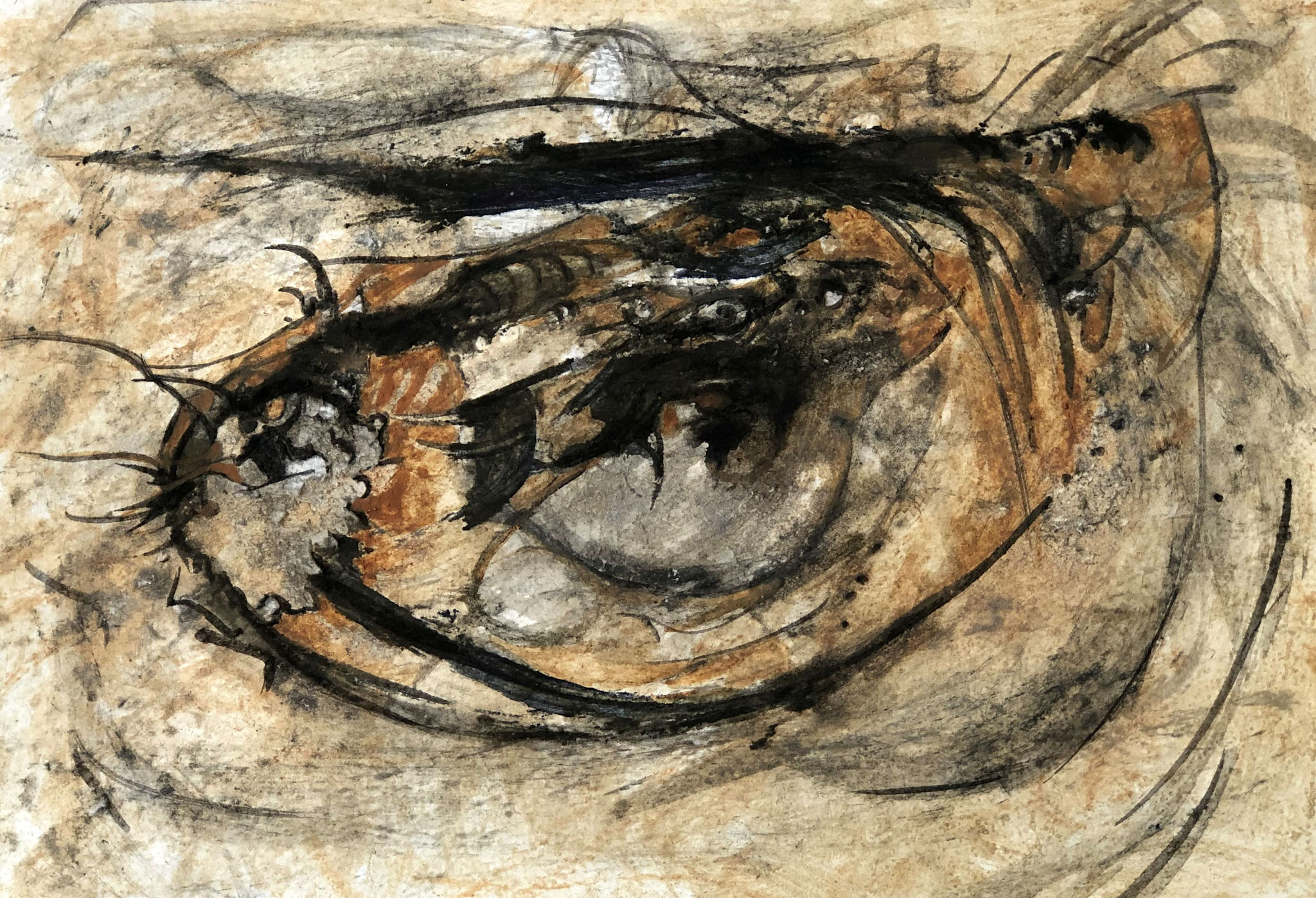RETINTO VII    Erden, Tintensekret vom Kalmar und Olivensaft auf Papier - 21 x 29 cm