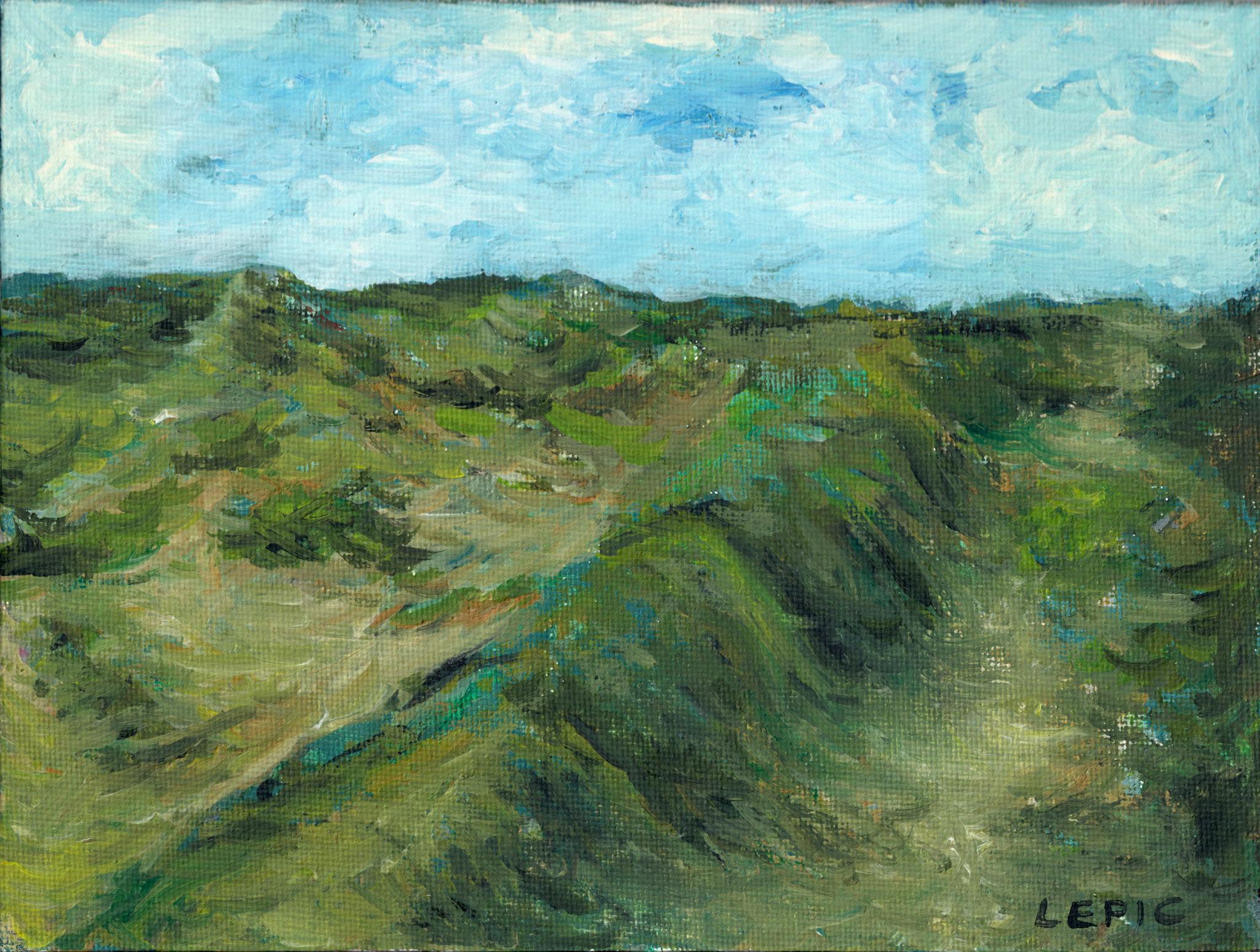DÜNENHEIDE AUF HIDDENSEE    Acryl auf Leinwand - 15 x 20 cm