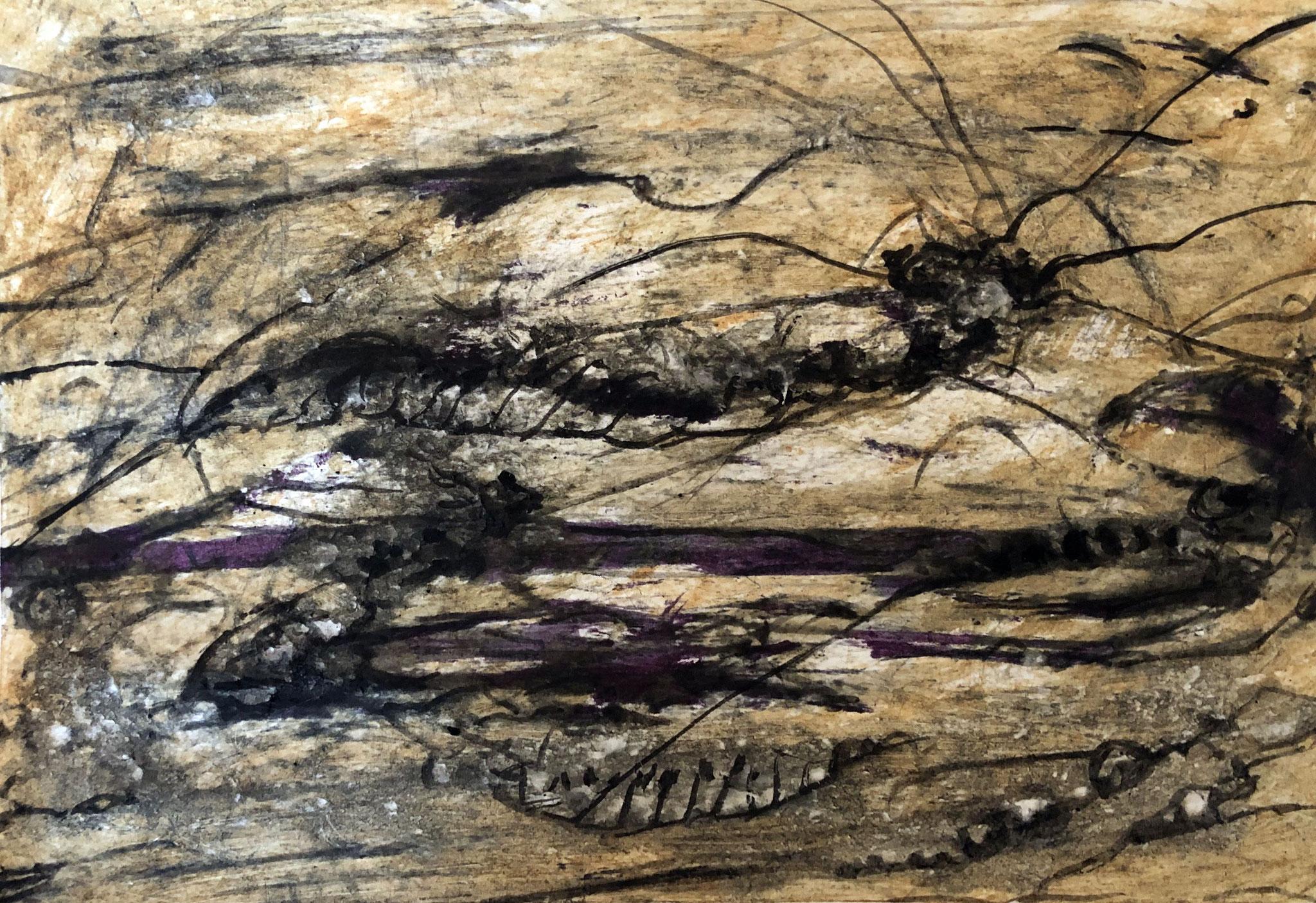 RETINTO I    Erden, Tintensekret vom Kalmar und Olivensaft auf Papier - 21 x 29 cm