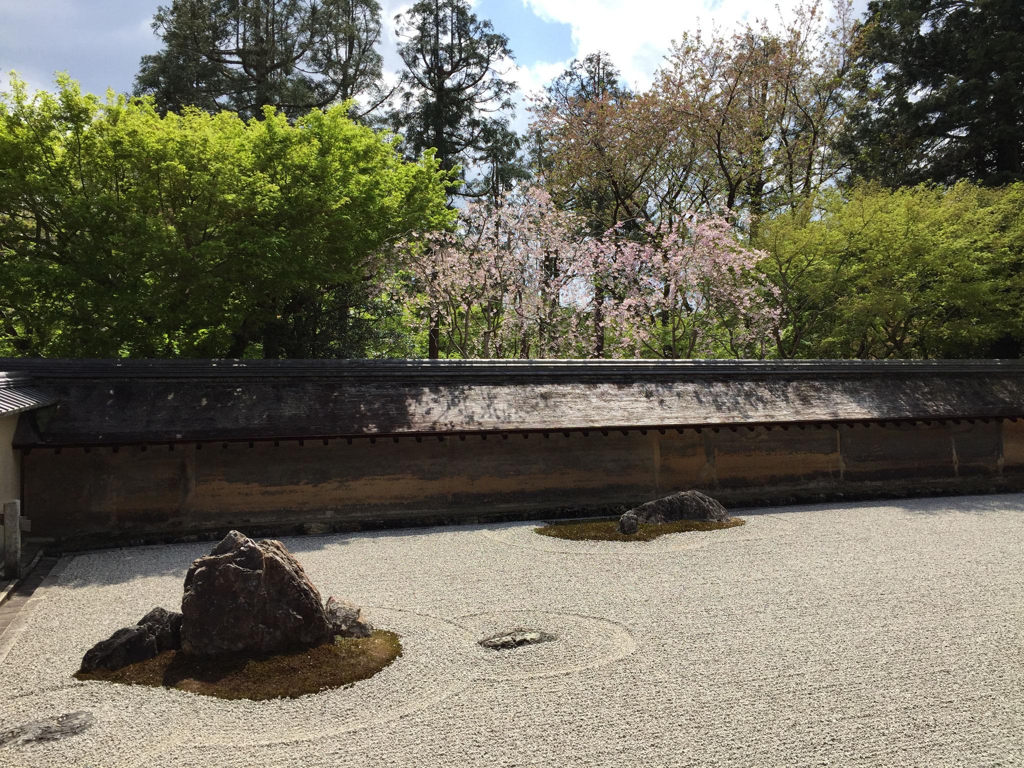 京都龍安寺の方丈 石庭