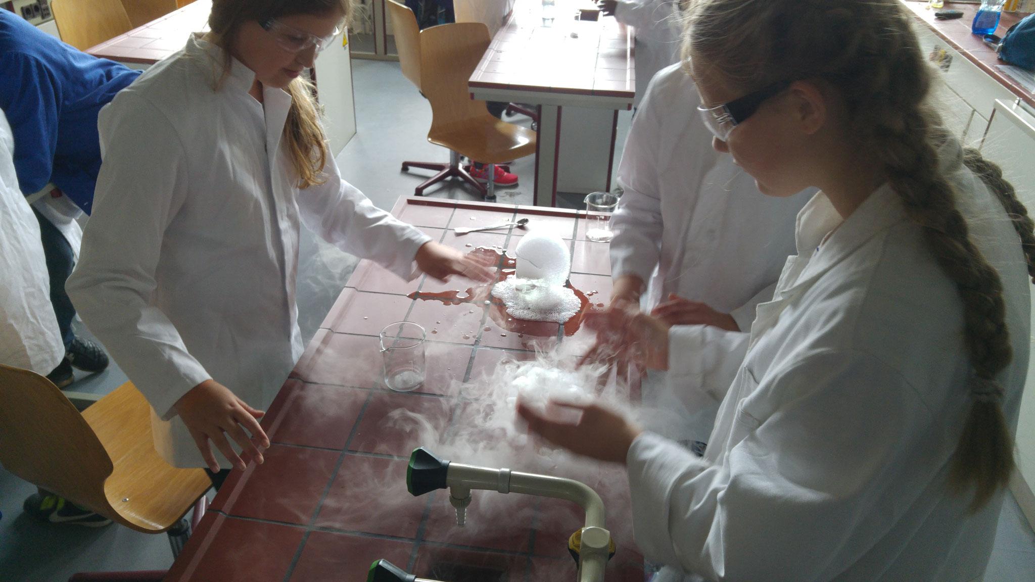 Junge Forscher