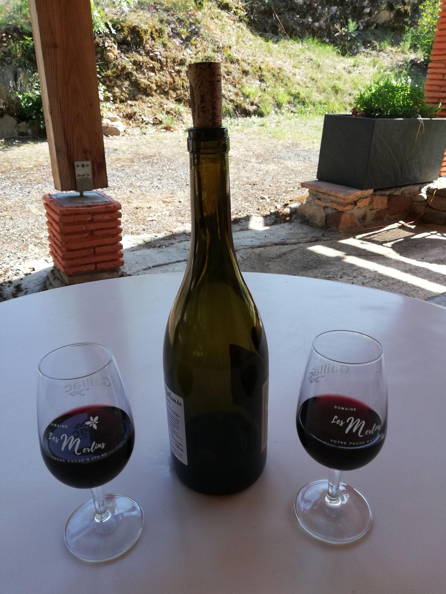 Goûter les vins de Gaillac