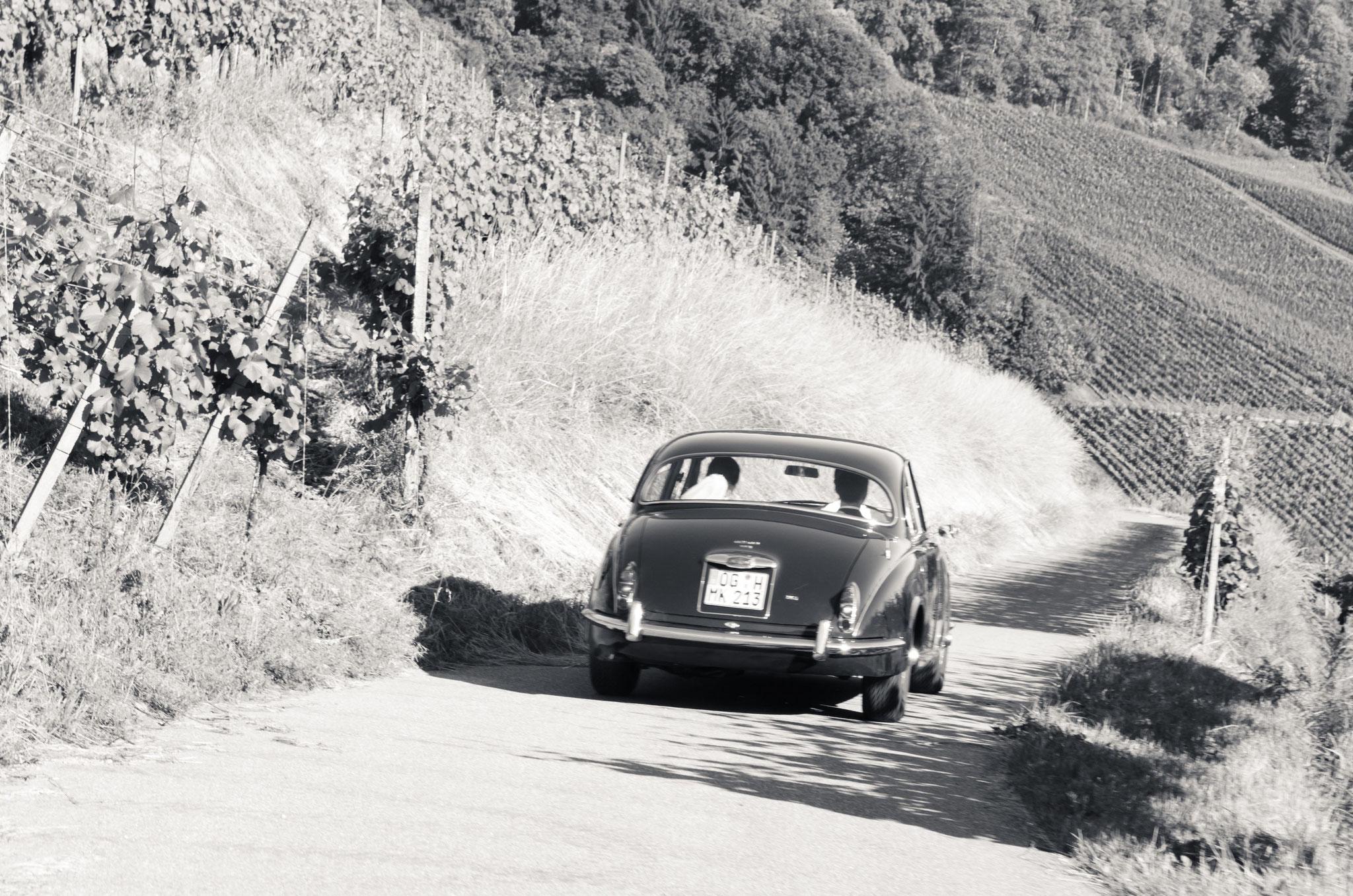 Hochzeitsauto Jaguar