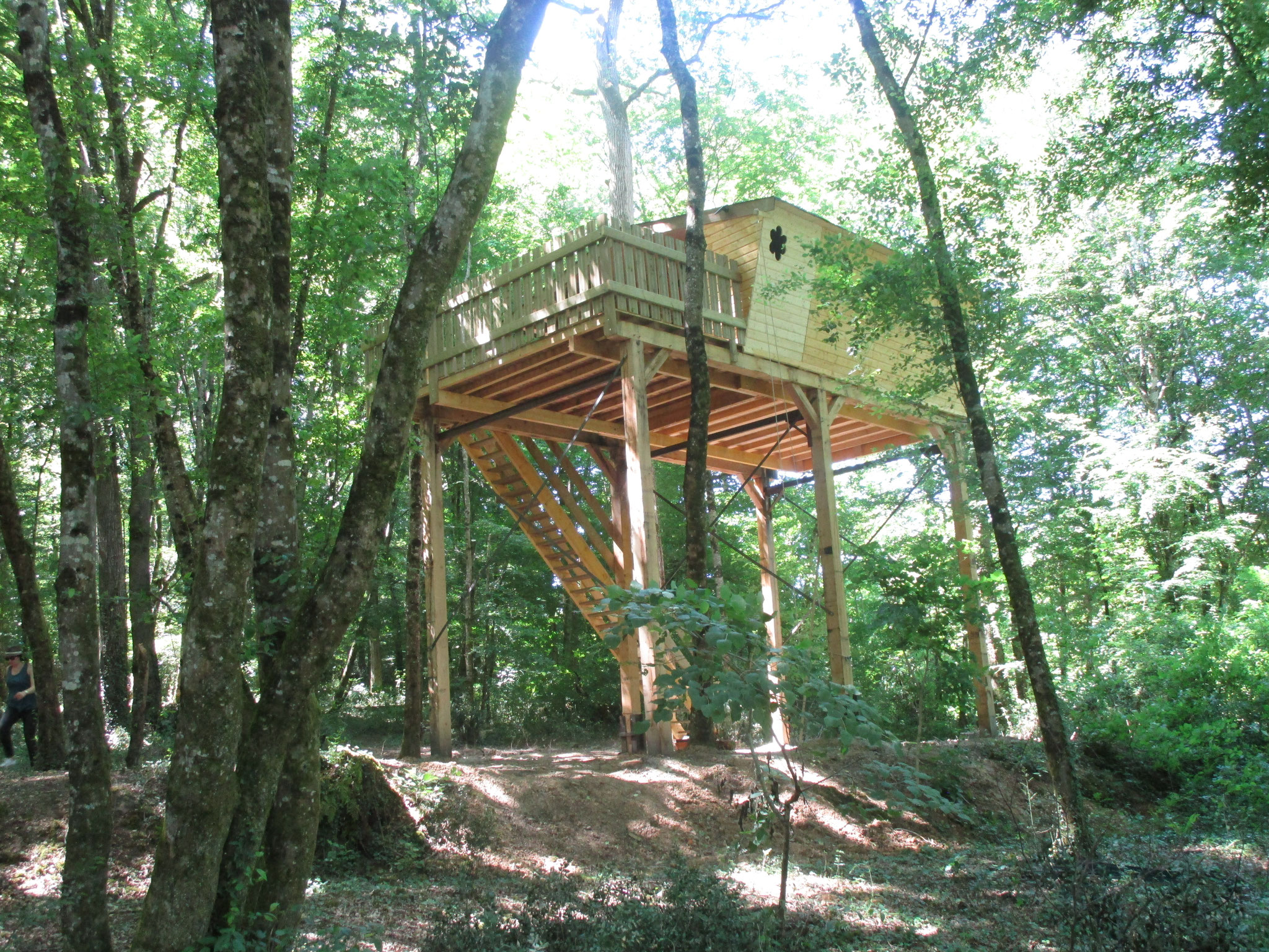 Séjour atypique  en forêt Cabane dans  les arbres L'Augis Nature
