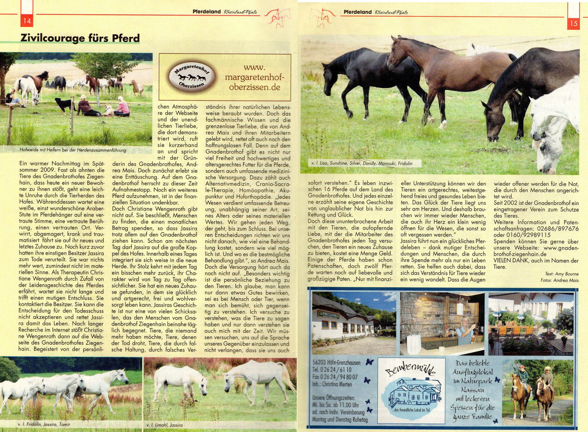 Pferdeland4.Dezember2010