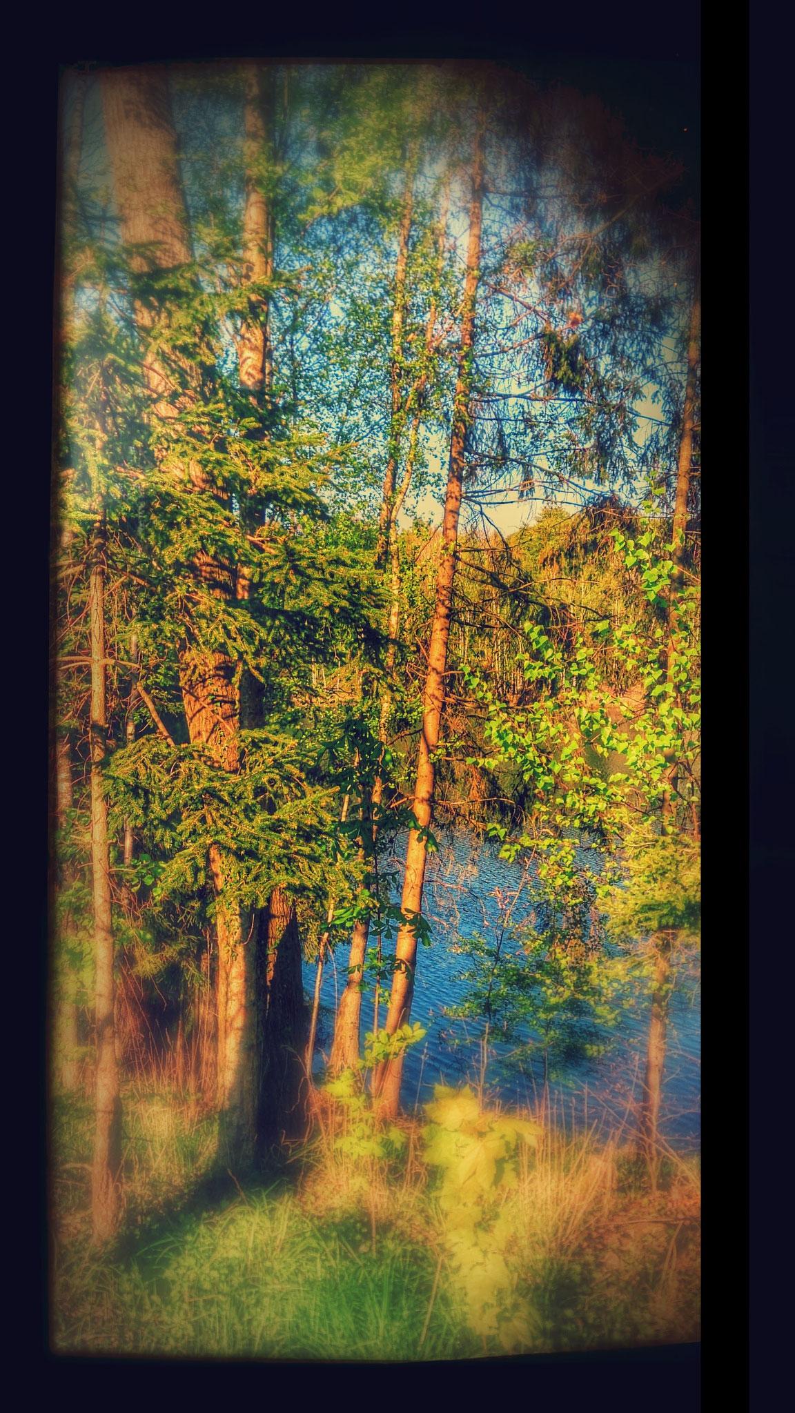 ~ Bild: Special Effects - 'Hubertussee@Klein-Bülten, Peiner Land' ~