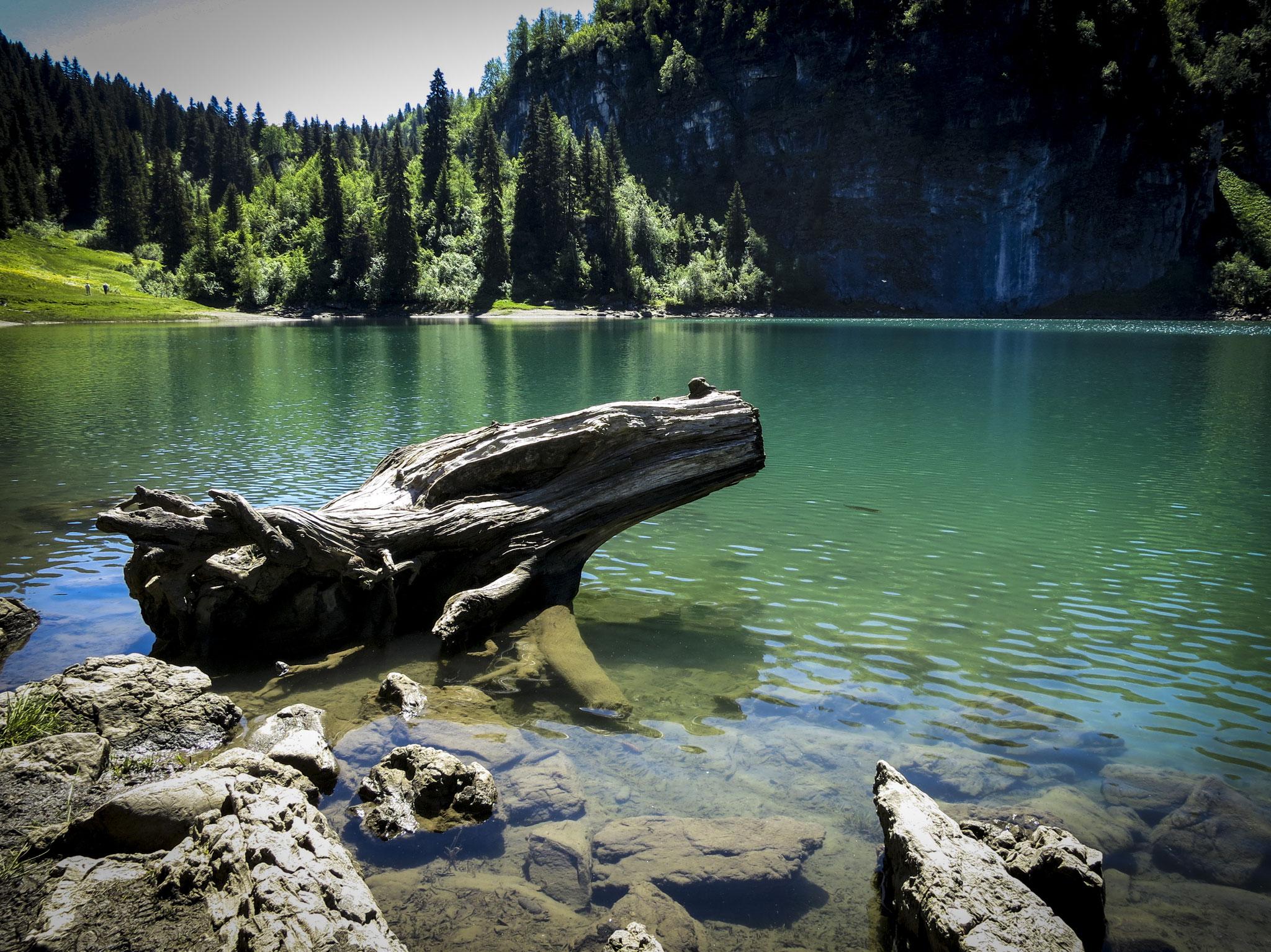 Lac des Chavonnes