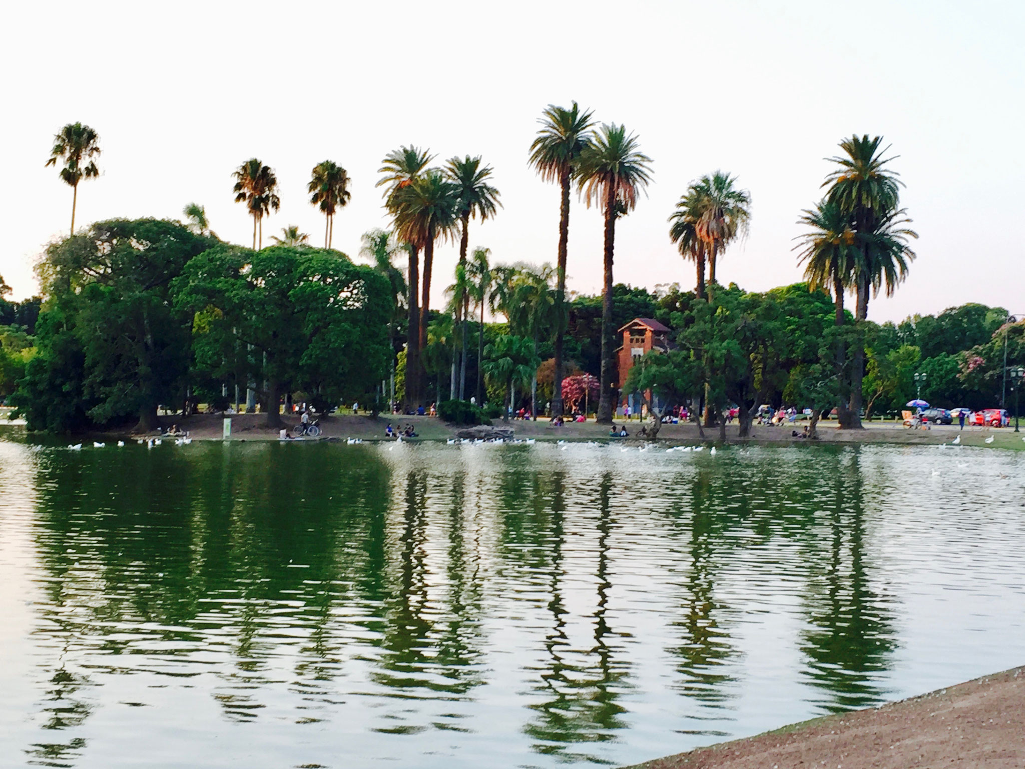 Park in Palermo